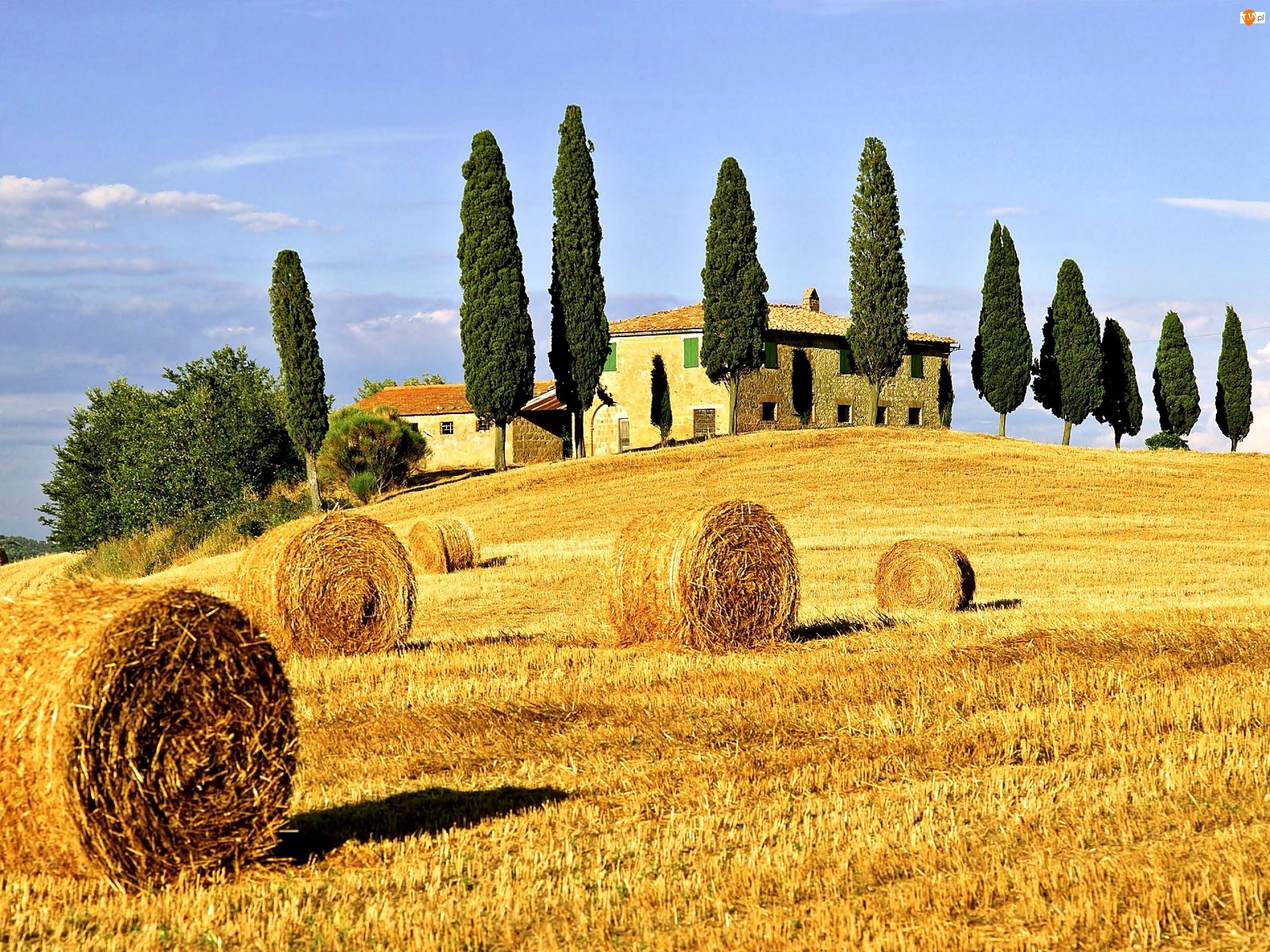 Dom, Toskania, Pole, Cyprysy
