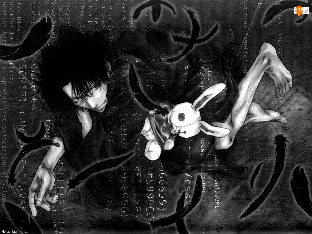 okulary, Saiyuki, nogi, postać, pluszak