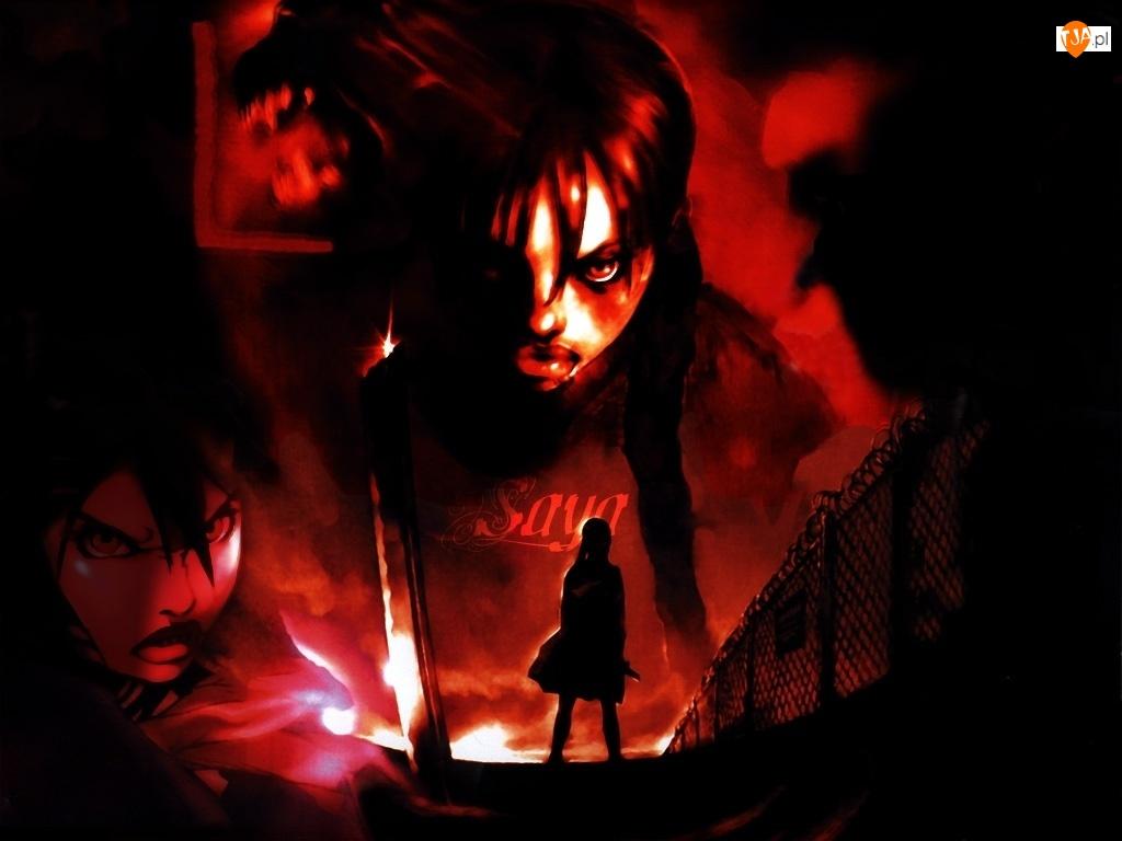 ogrodzenie, Blood The Last Vampire, twarze, postać, gniew