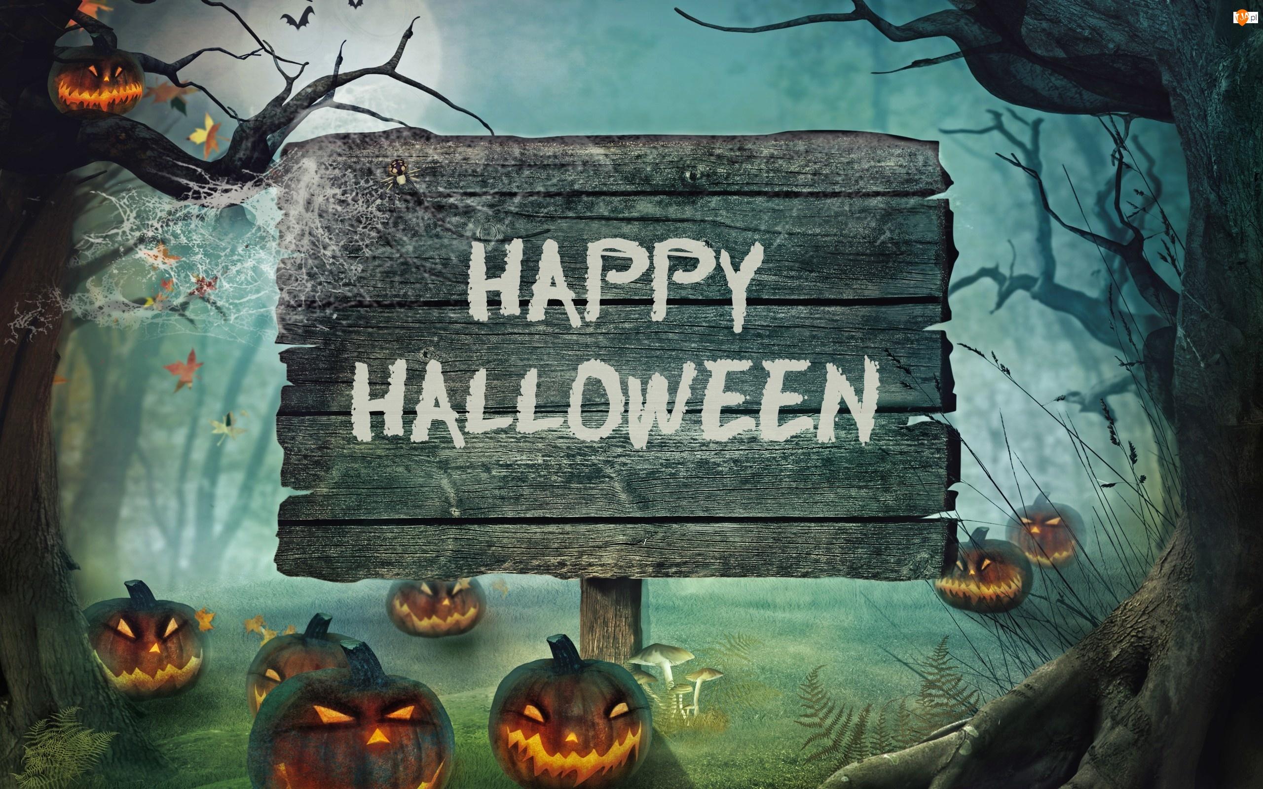 Halloween, Napis, Dynie, Noc