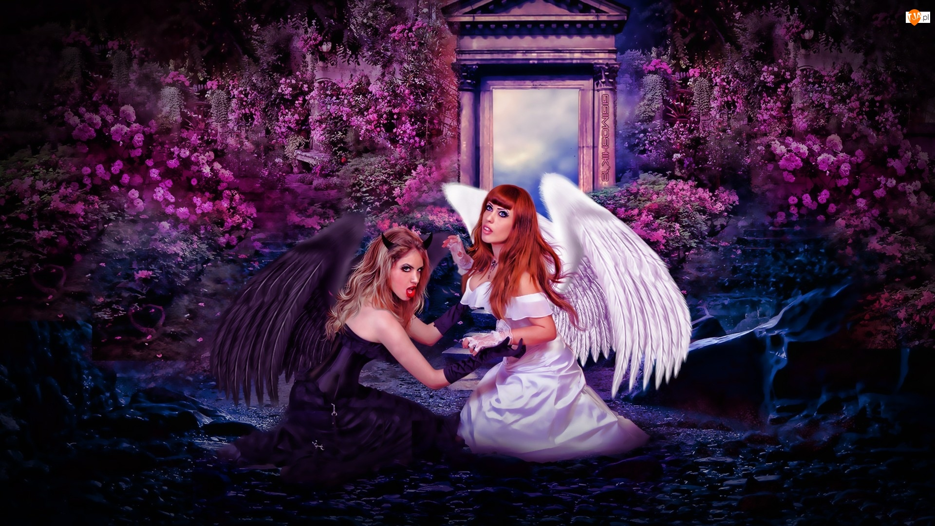Kobiety, Walka, Anioł, Diablica