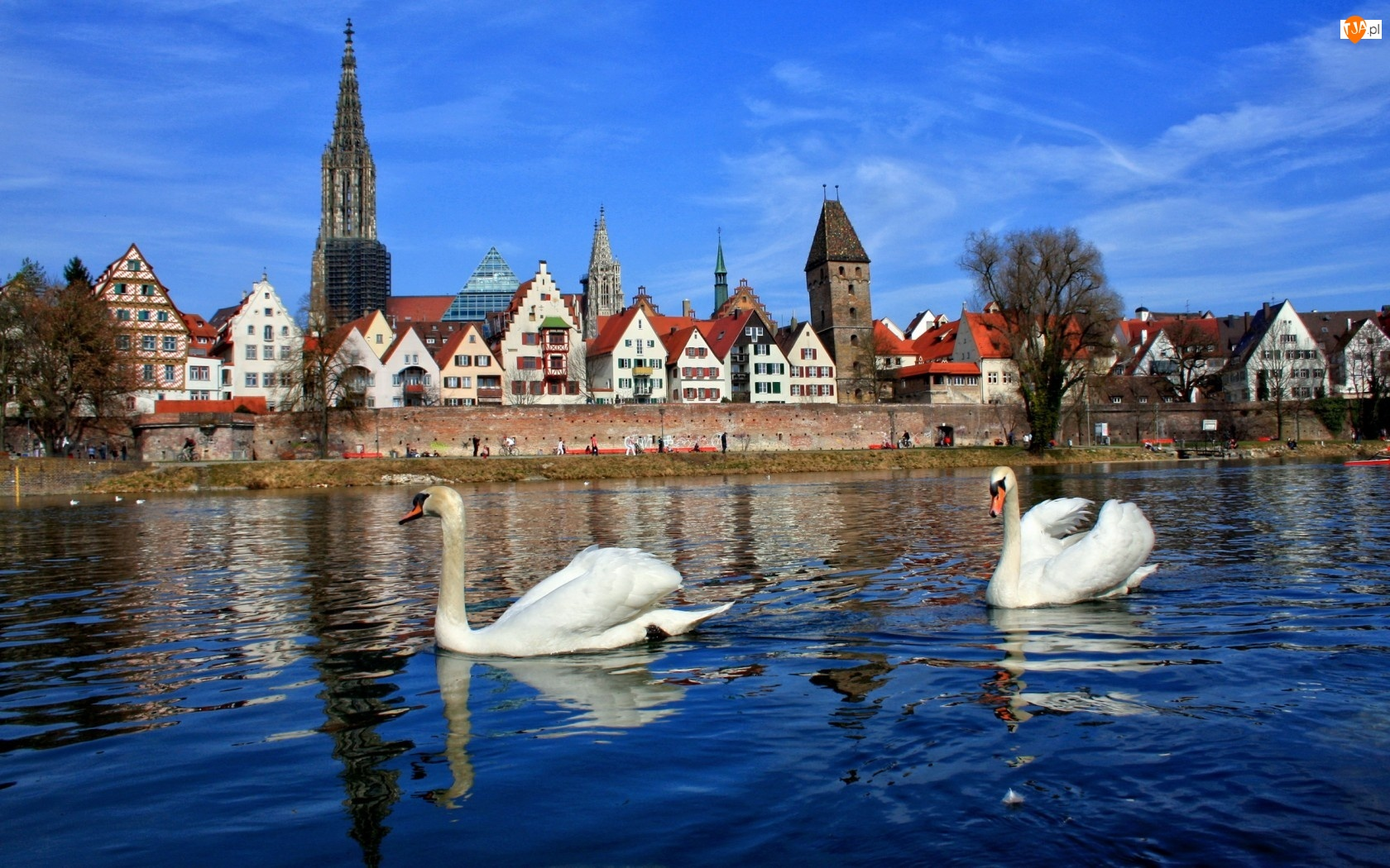 Łabędzie, Niemcy, Miasteczko, Bawaria