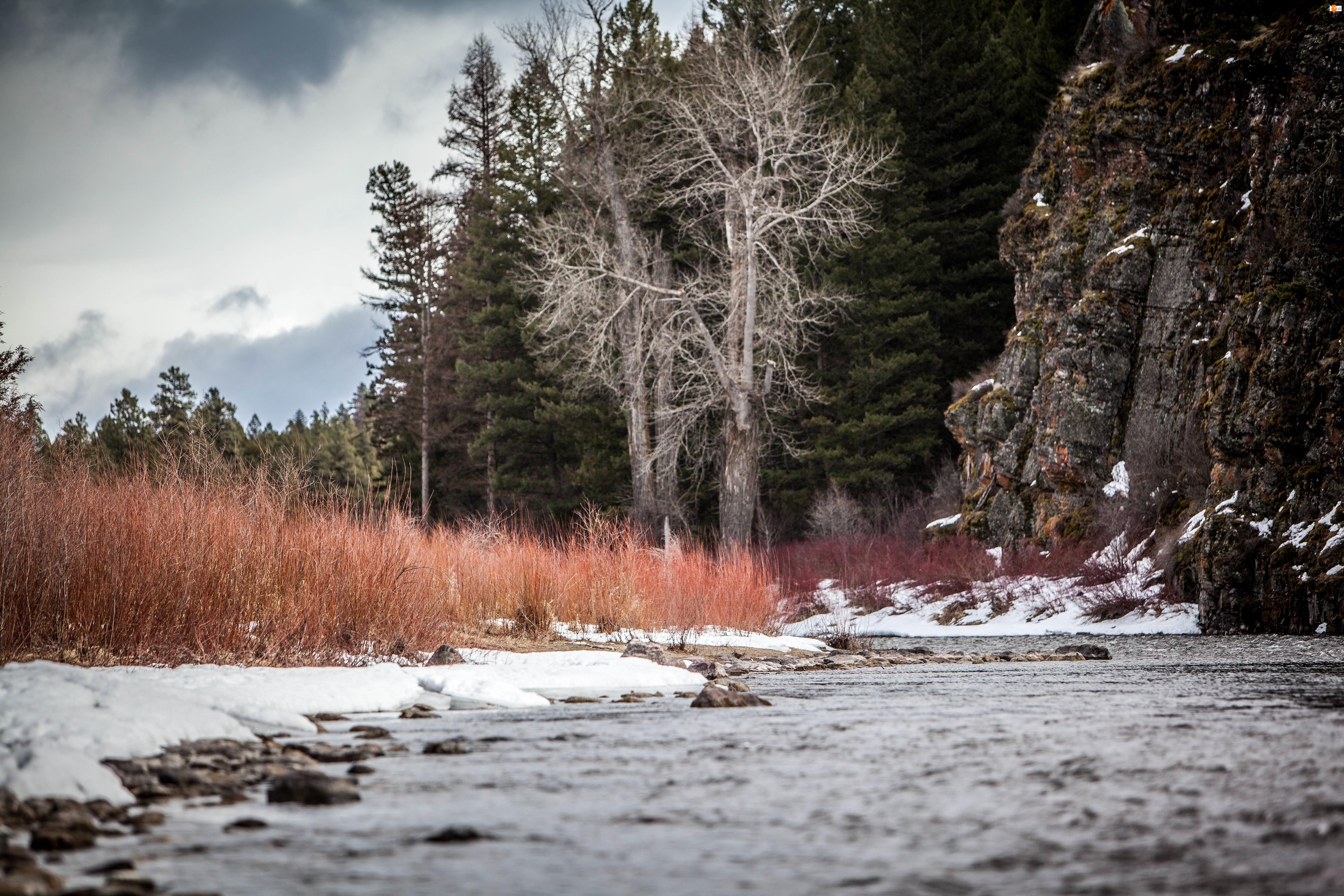 Zima, Las, Góry, Rzeka