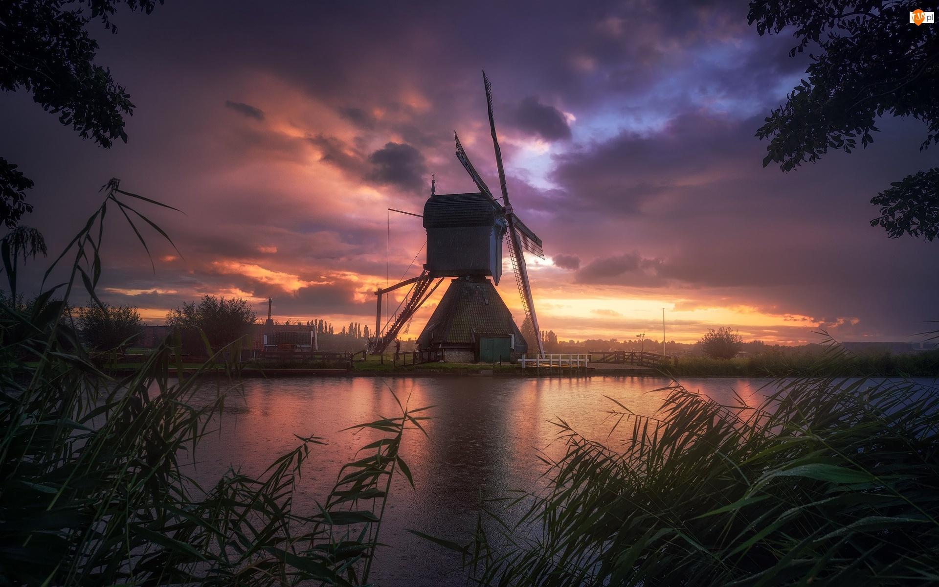 Wiatrak, Szuwary, Holandia, Rzeka, Kinderdijk, Zachód słońca