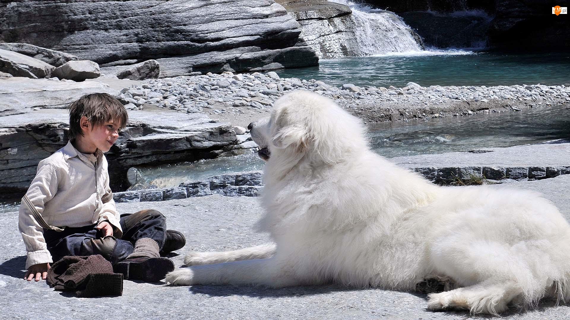 Rzeka, Félix Bossuet, Bella i Sebastian, Film, Kamienie, Dziecko, Pirenejski pies górski