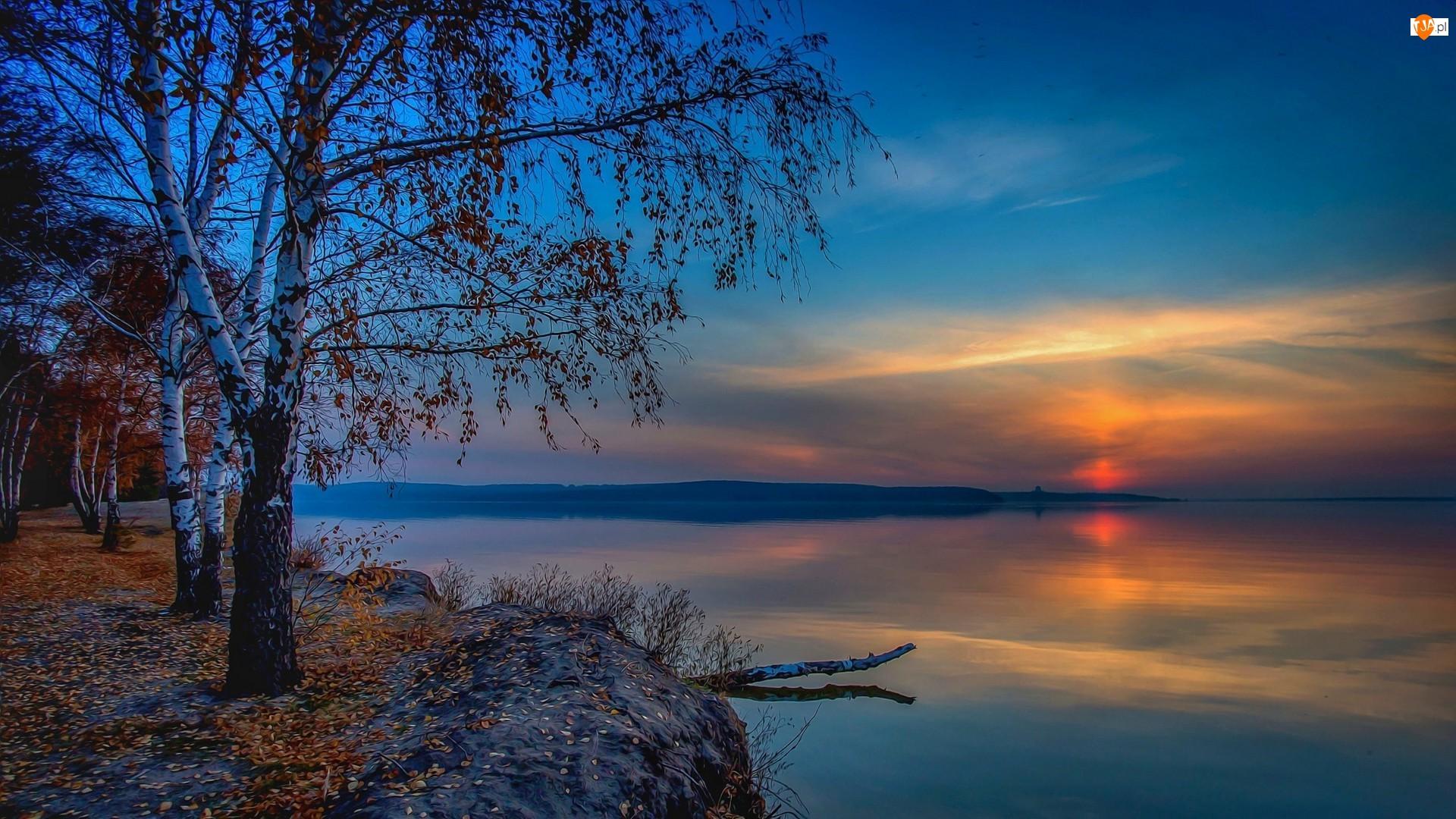 Jezioro, Brzoza, Zachód słońca, Fractalius