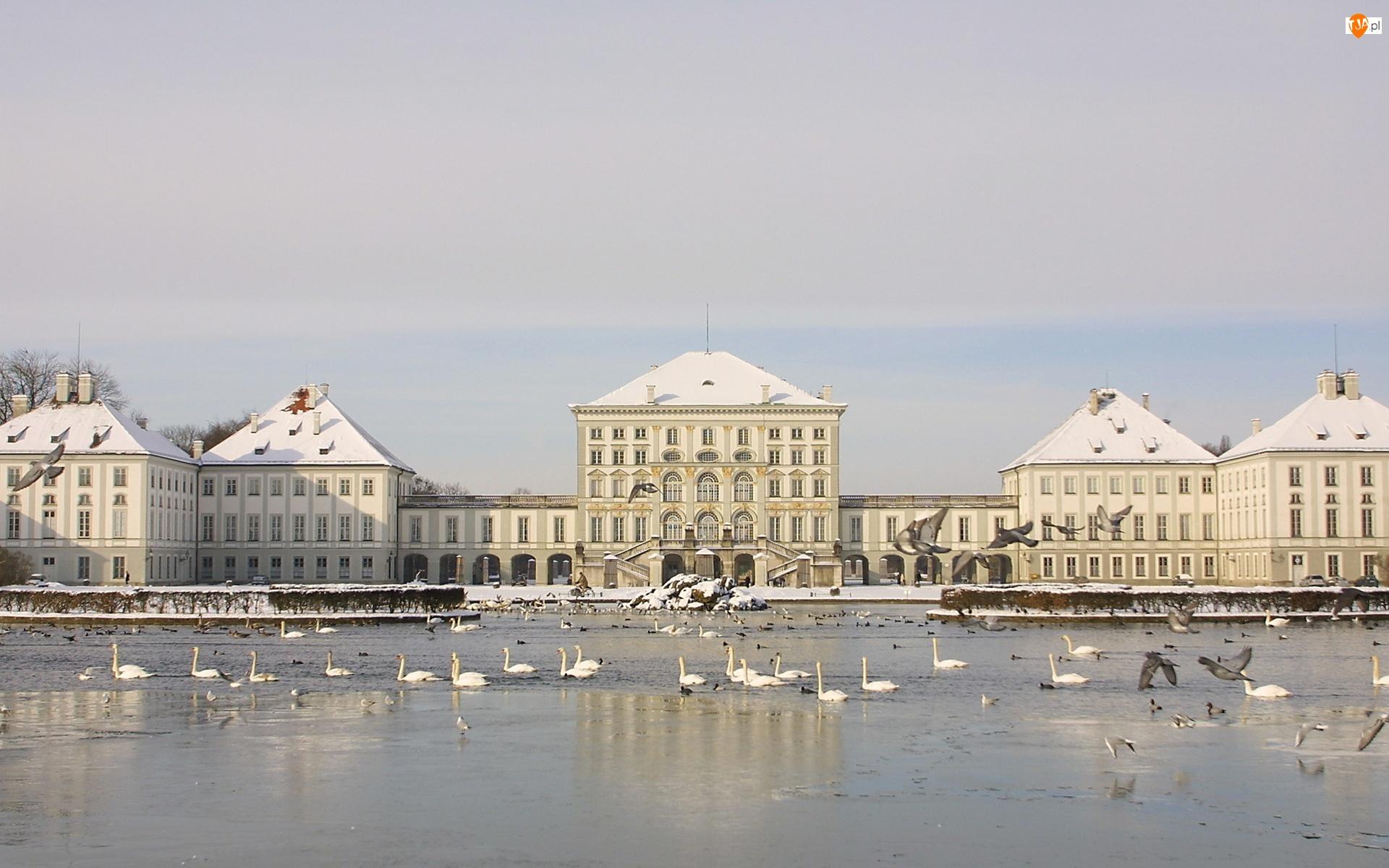 Pałace, Łabędzie, Zima, Jezioro