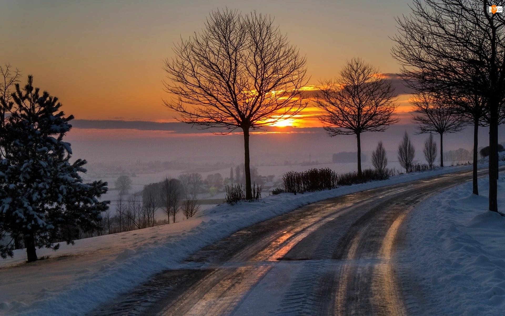 Słońca, Zima, Droga, Drzewa, Zachód