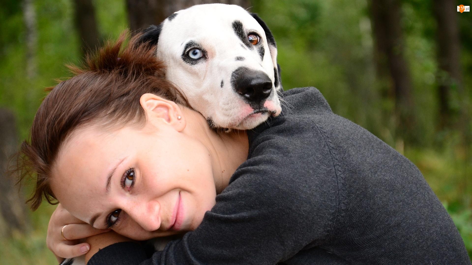 Kobieta, Przyjaźń, Pies, Dalmatyńczyk