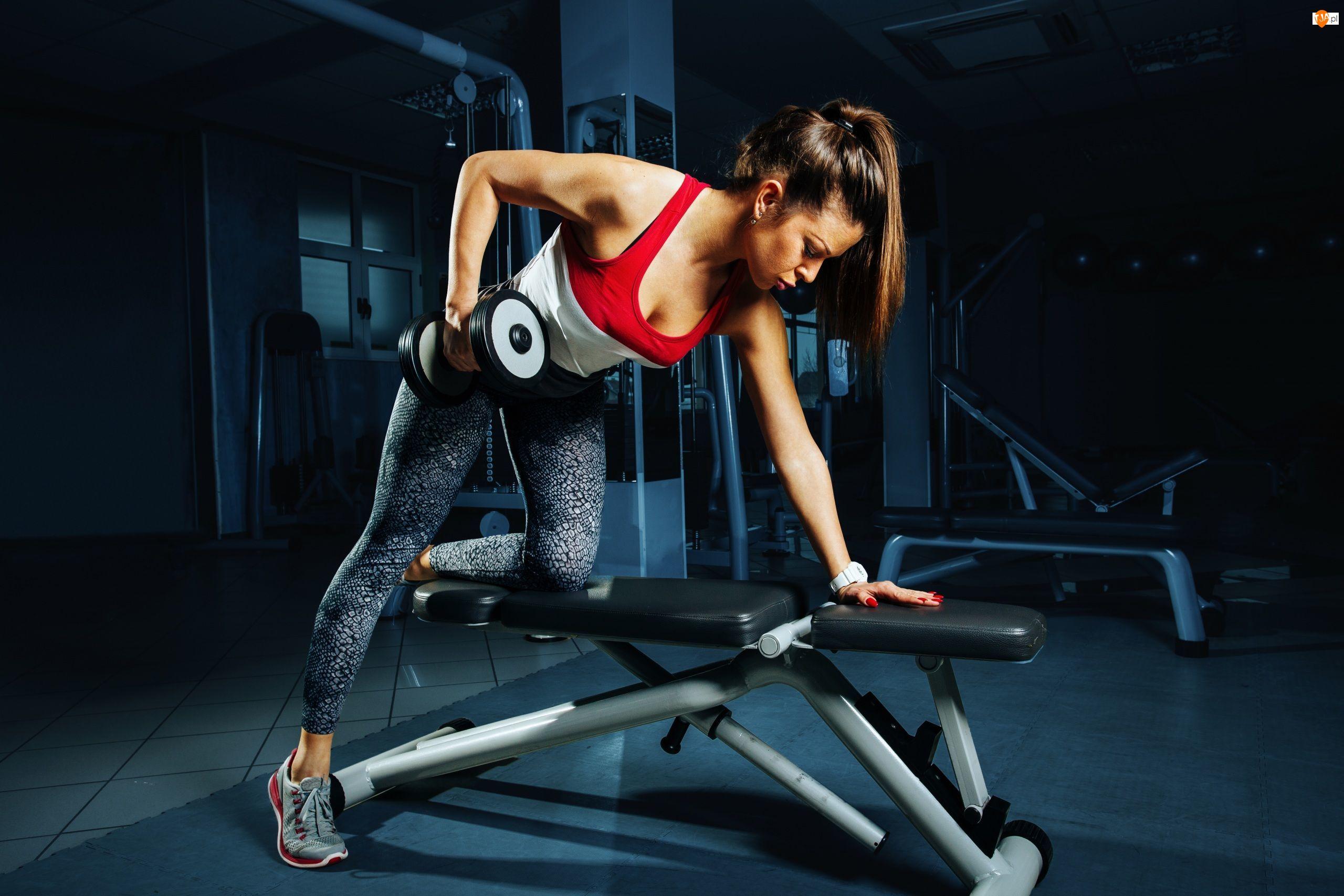 Fitness, Kobieta, Przyrząd, Ciężarki
