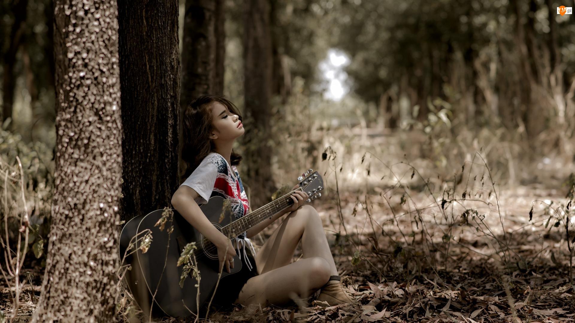 Drzewa, Dziewczyna, Gitara