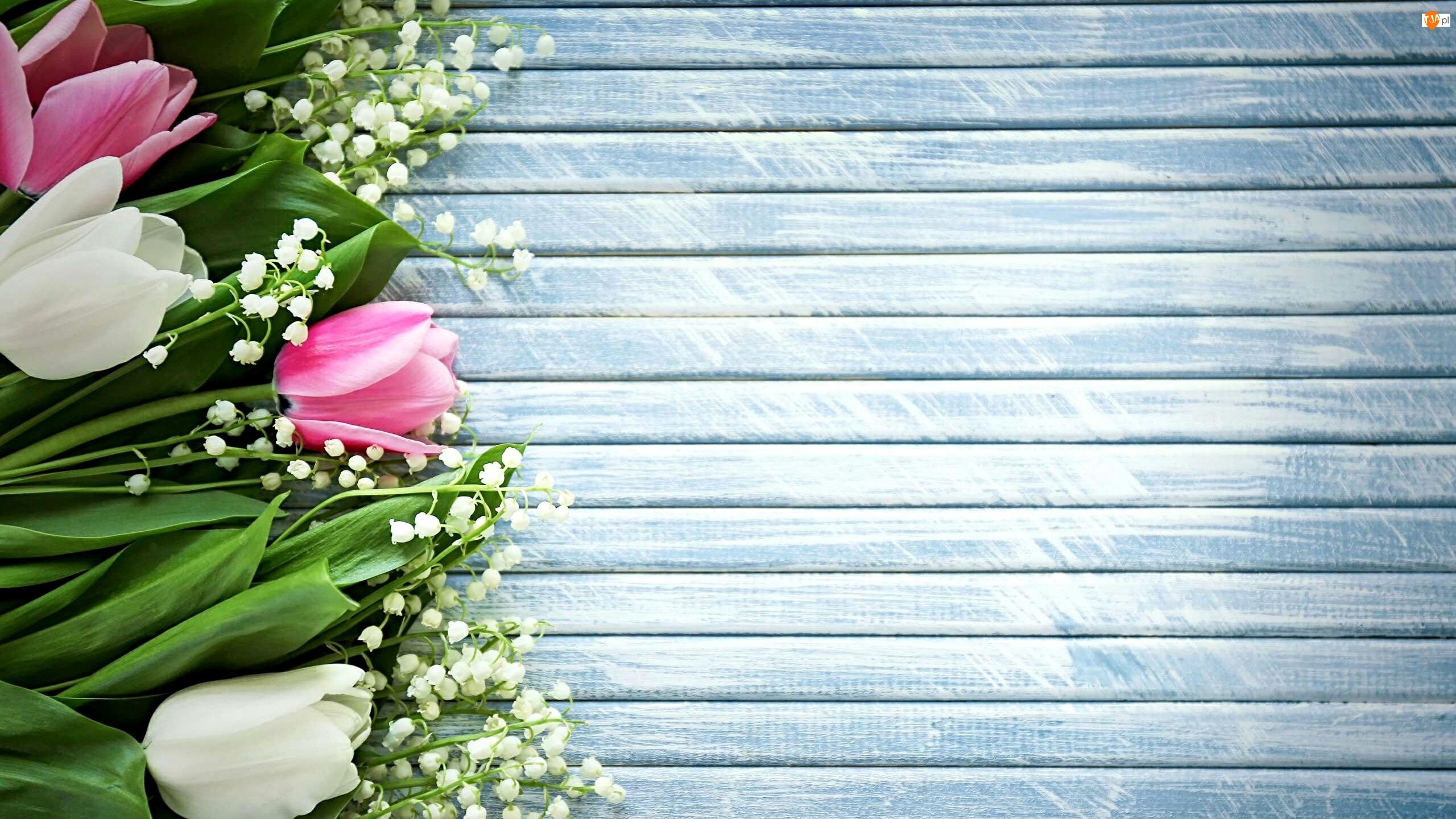 Tulipany, Kwiaty, Konwalia majowa