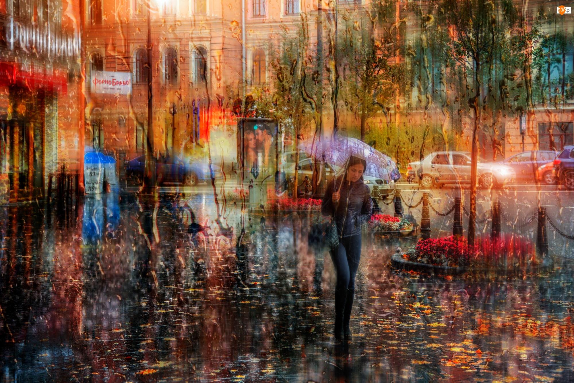 Deszcz, Parasol, Ulica, Kobieta