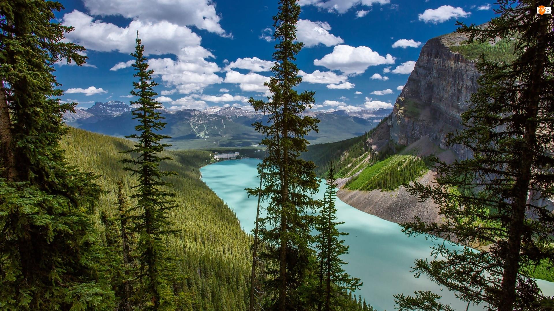 Park Narodowy Banff, Jezioro Moraine, Drzewa, Kanada, Lasy, Drzewa, Góry