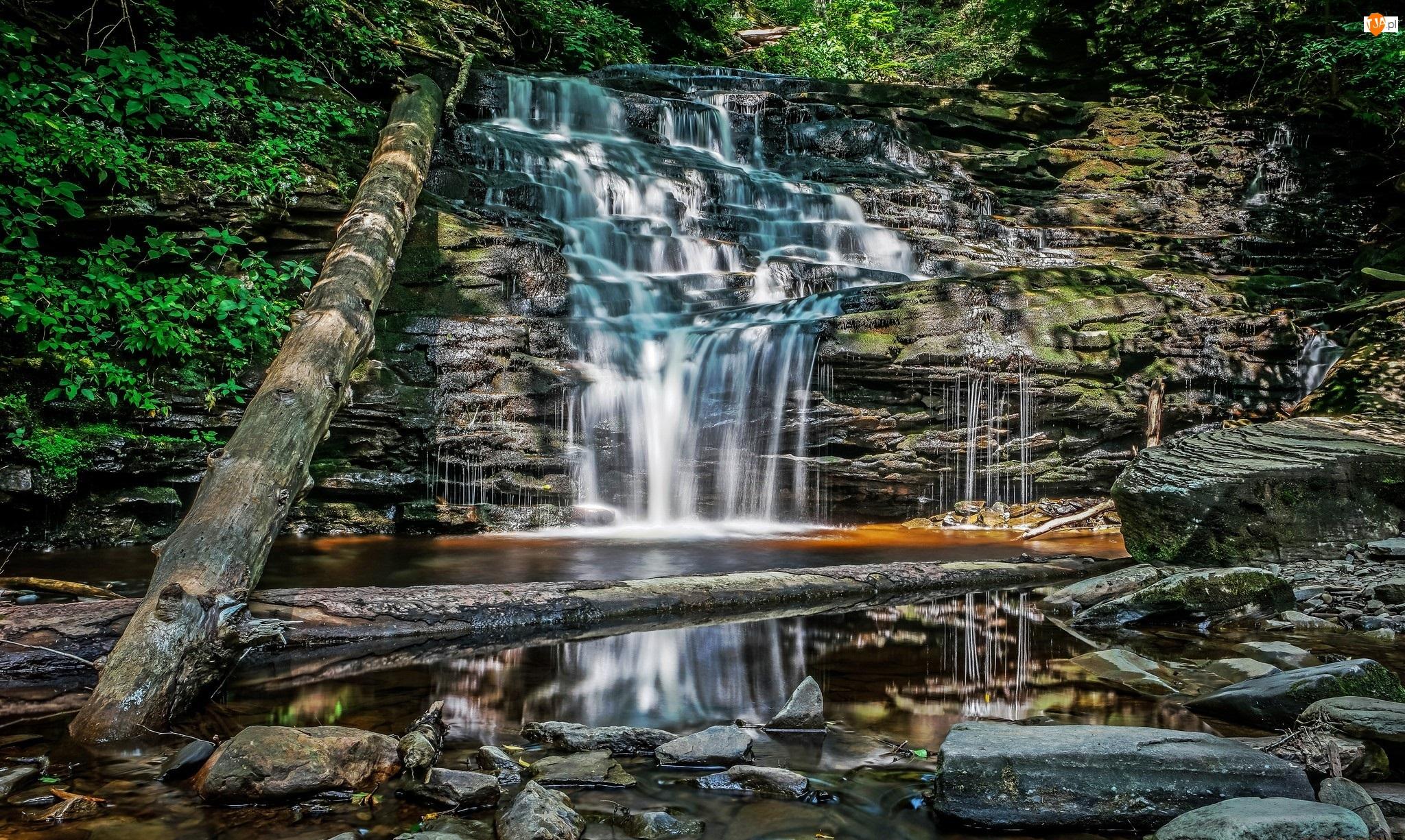 Wodospad, Kamienie, Skały, Drzewa