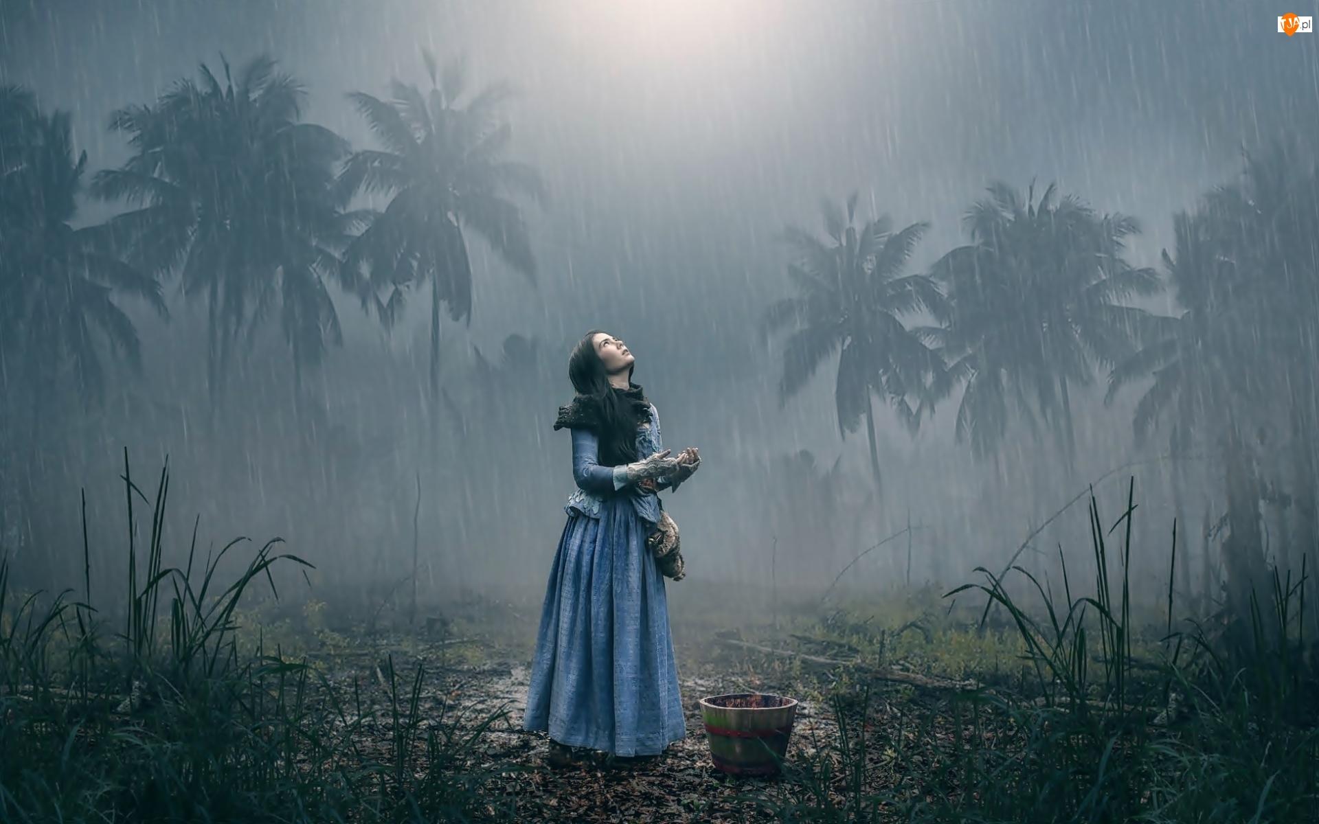Deszcz, Dziewczyna, Palmy