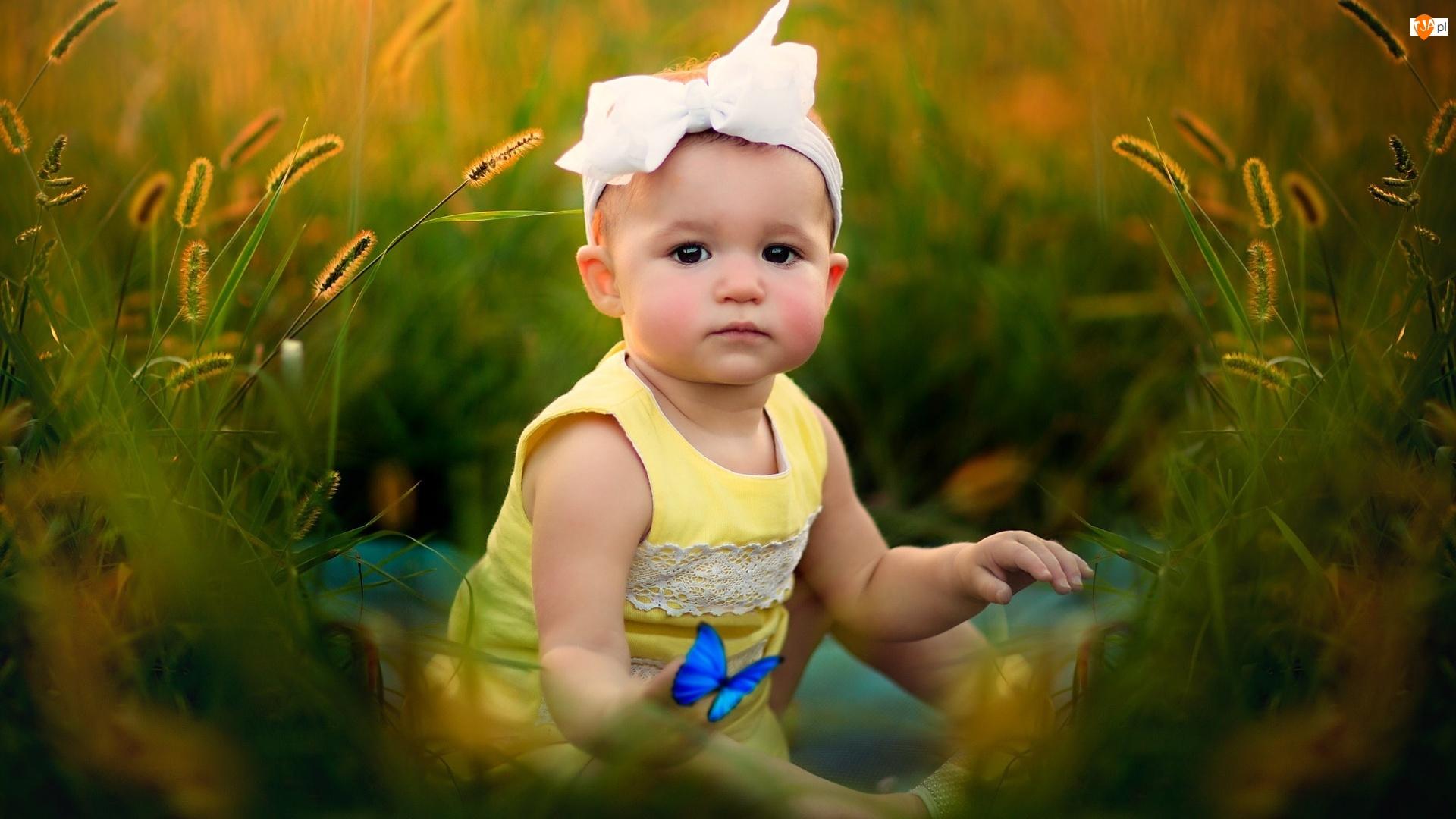 Dziewczynka, Niebieski, Małe, Motylek, Dziecko, Łąka
