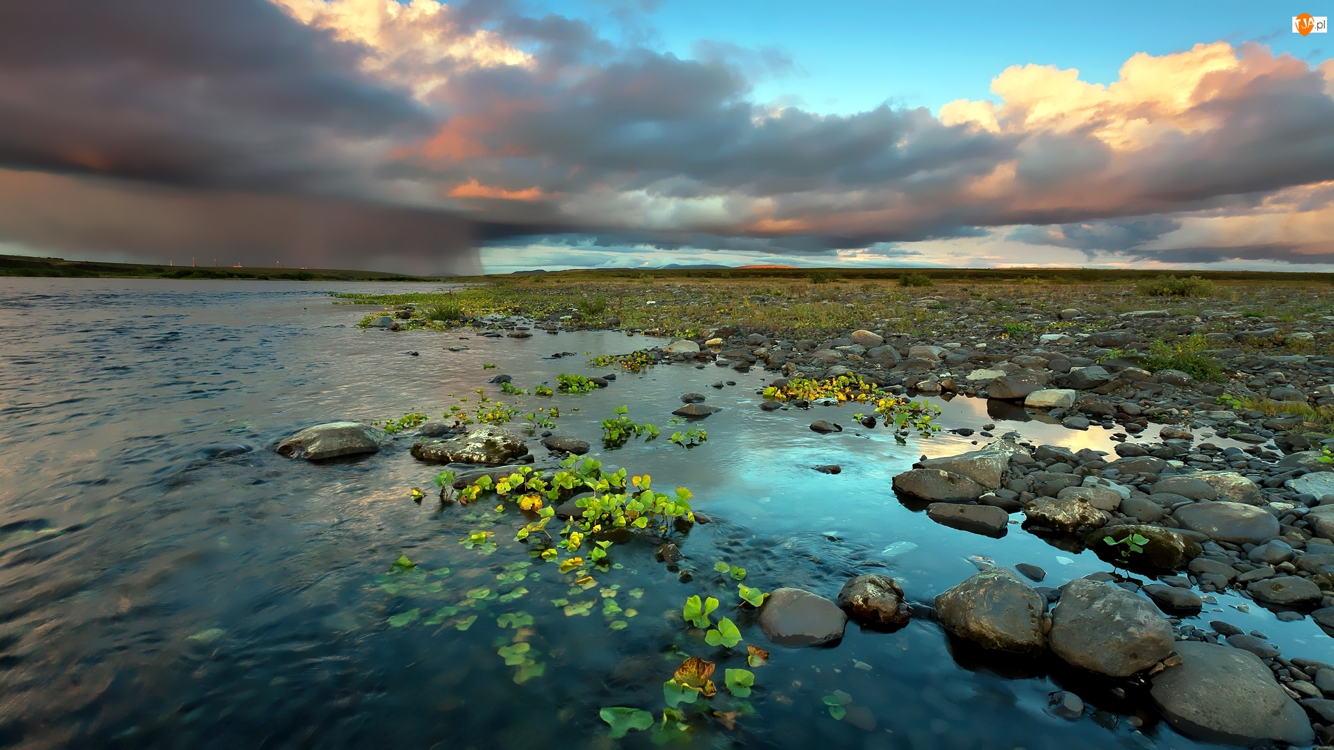 Rośliny, Rosja, Kamienie, Rzeka Usa, Chmury