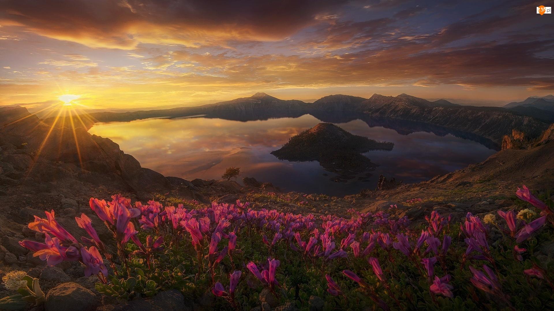 Jezioro Kraterowe, Góry, Stan Oregon, Promienie słońca, Stany Zjednoczone, Kwiaty, Wyspa Czarodzieja, Zachód Słońca