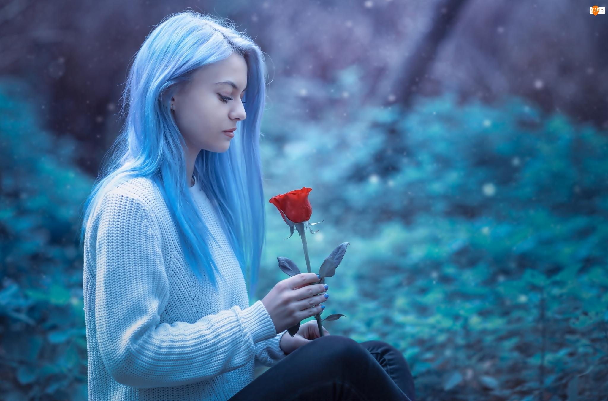 Kobieta, Róża, Jasnoniebieskie, Włosy