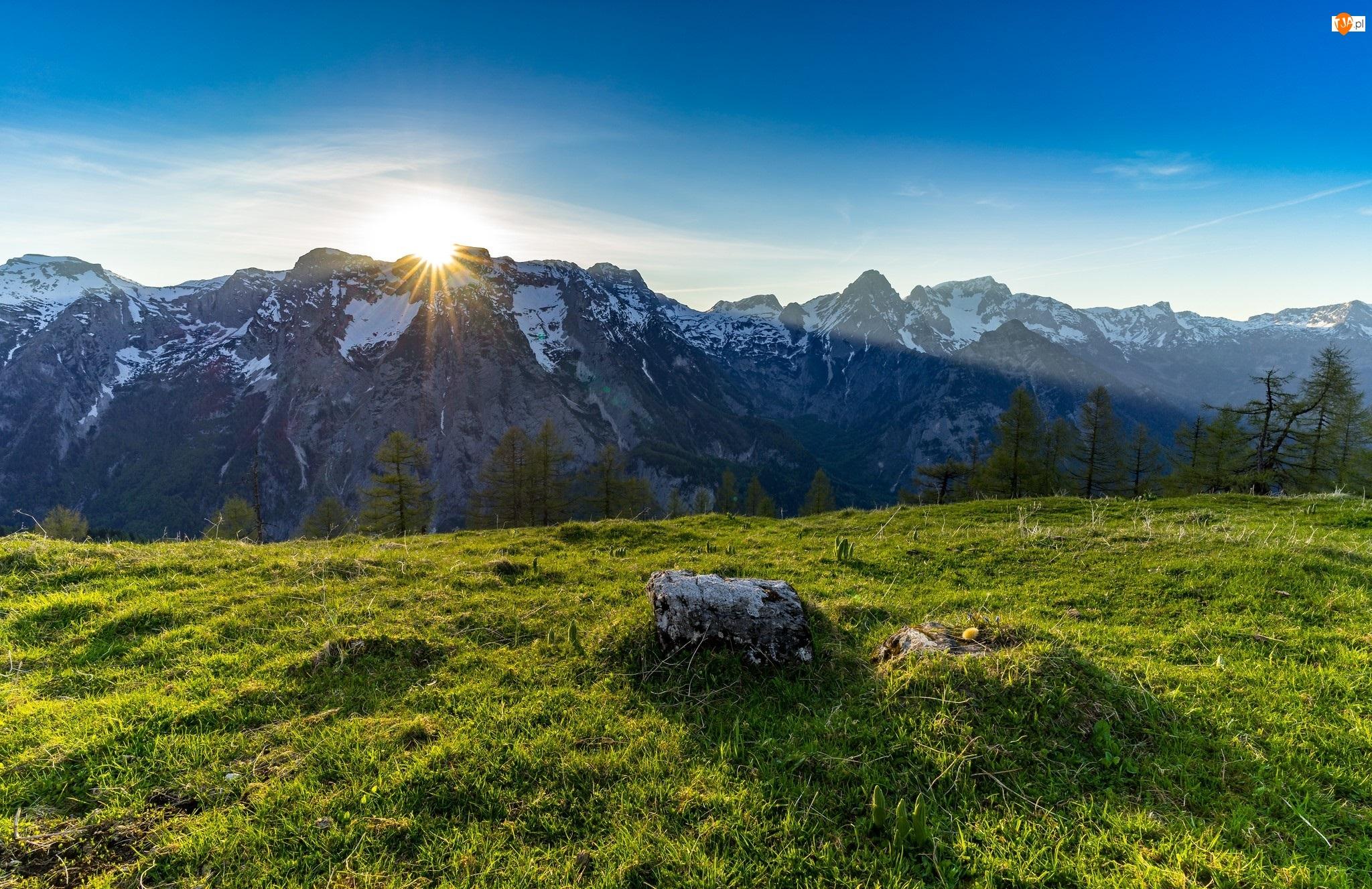 Promienie słońca, Góry, Łąka