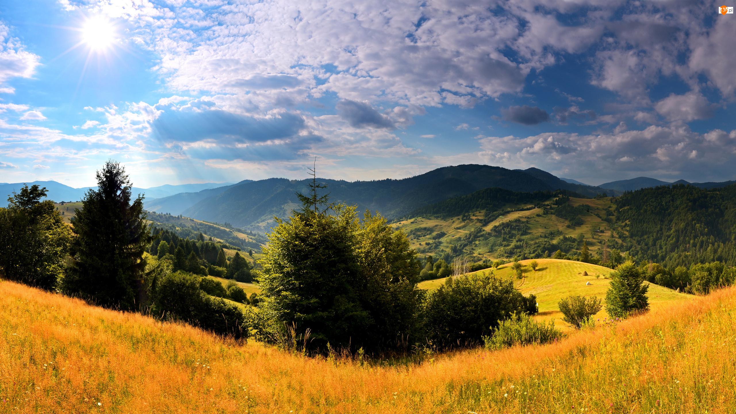 Promienie Słońca, Ukraina, Góry, Jesień, Karpaty