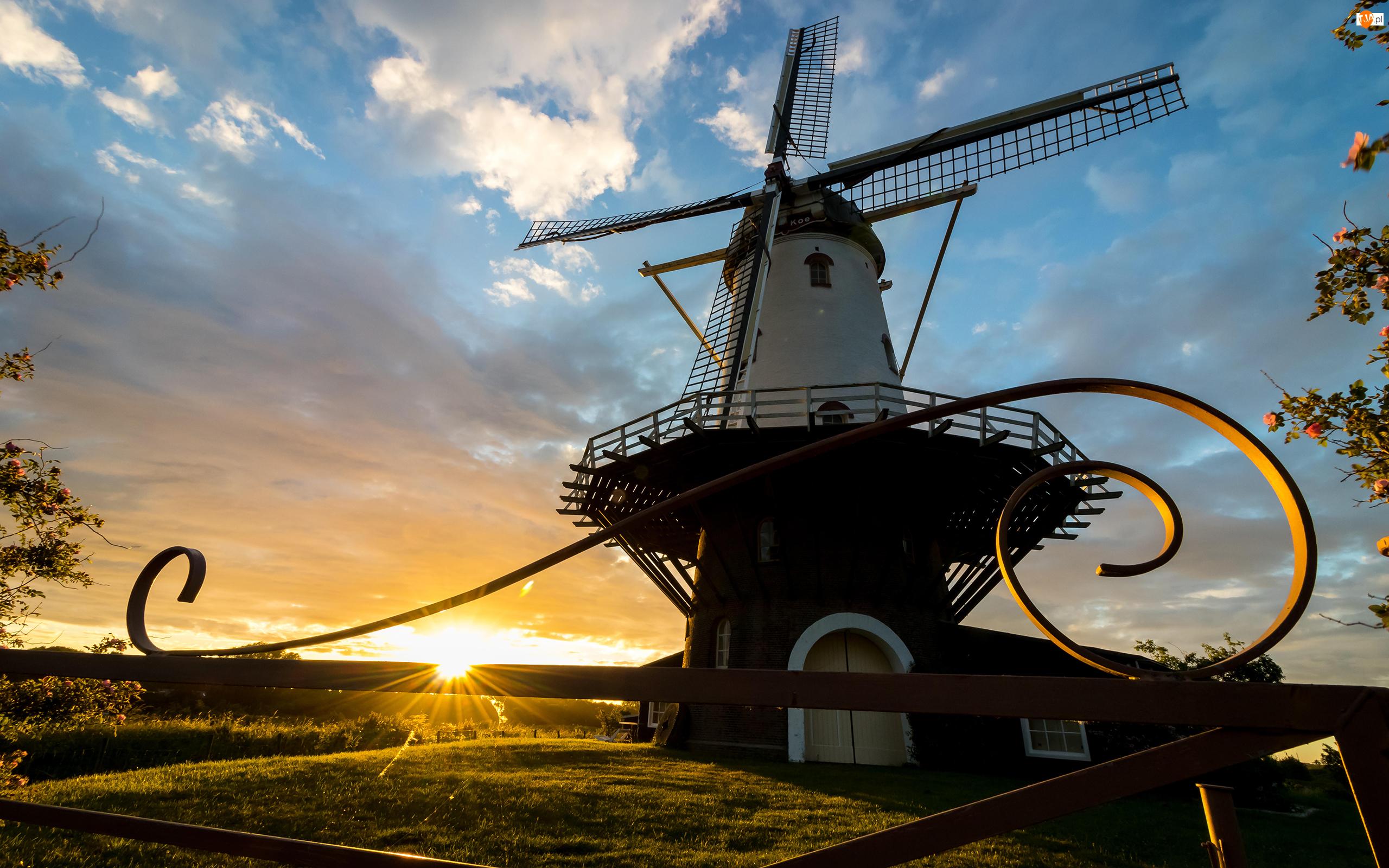 Brama, Holandia, Wiatrak, Veere, Wschód słońca