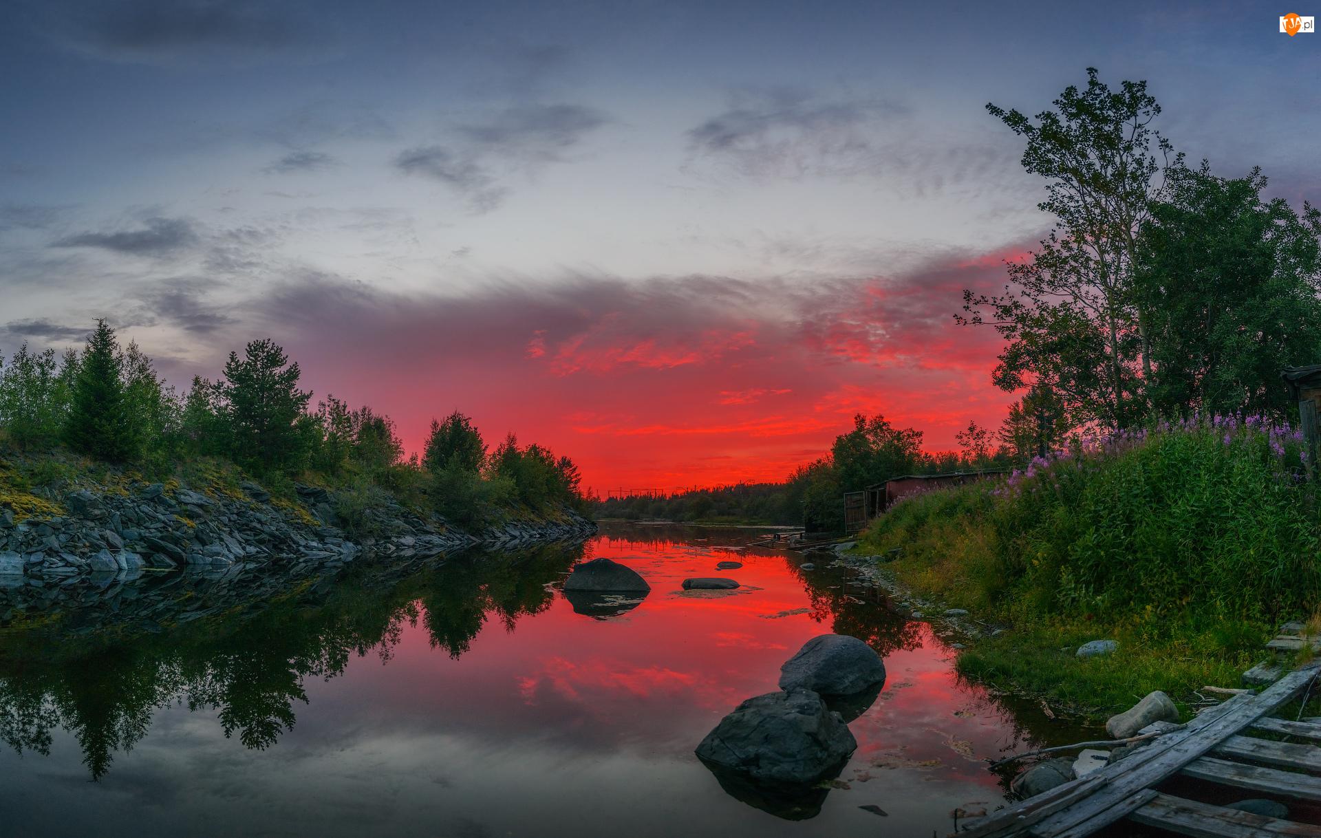 Kamienie, Zachód słońca, Rośliny, Rzeka, Drzewa