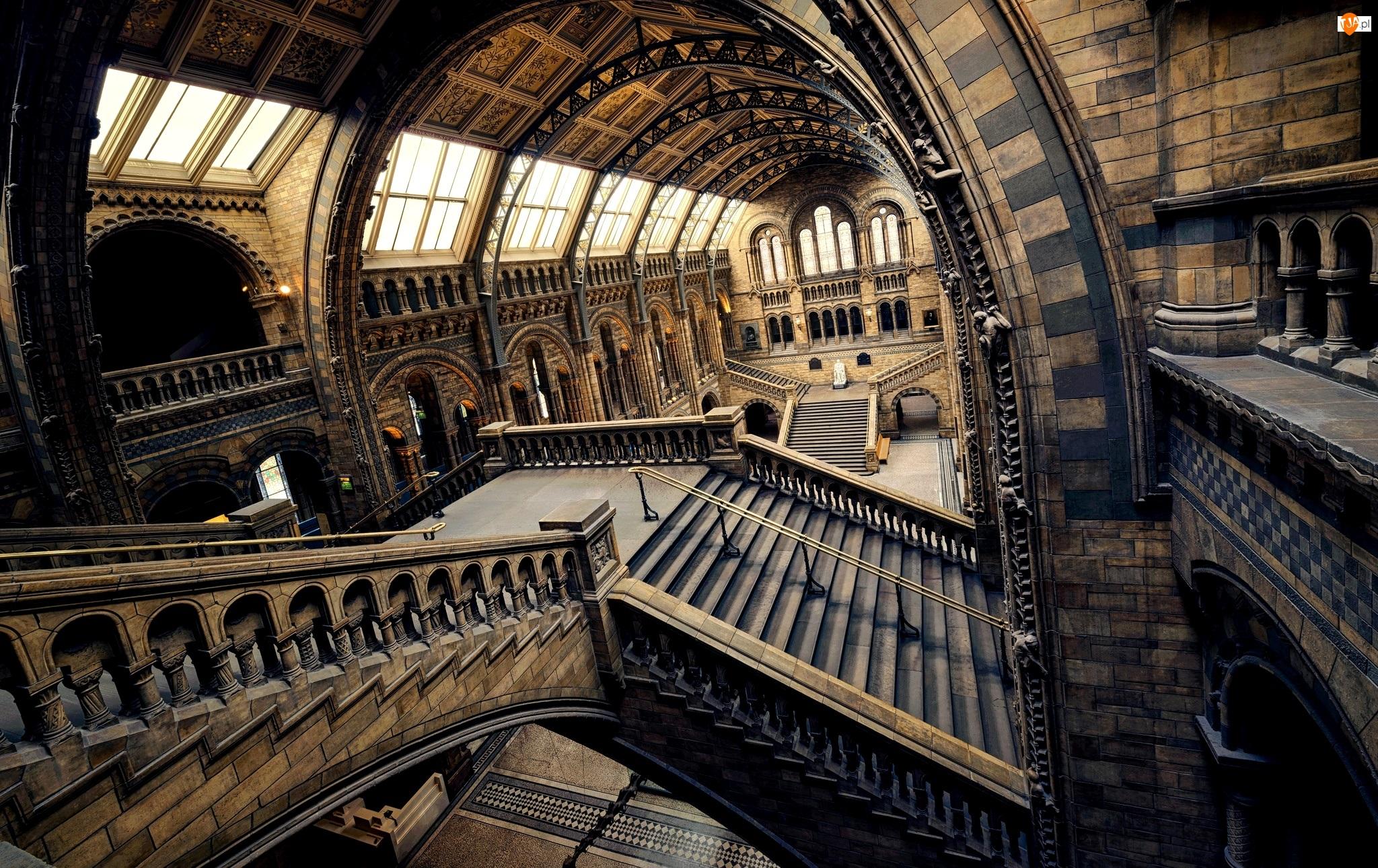 Wnętrze, Anglia, Muzeum Historii Naturalnej, Londyn, Schody
