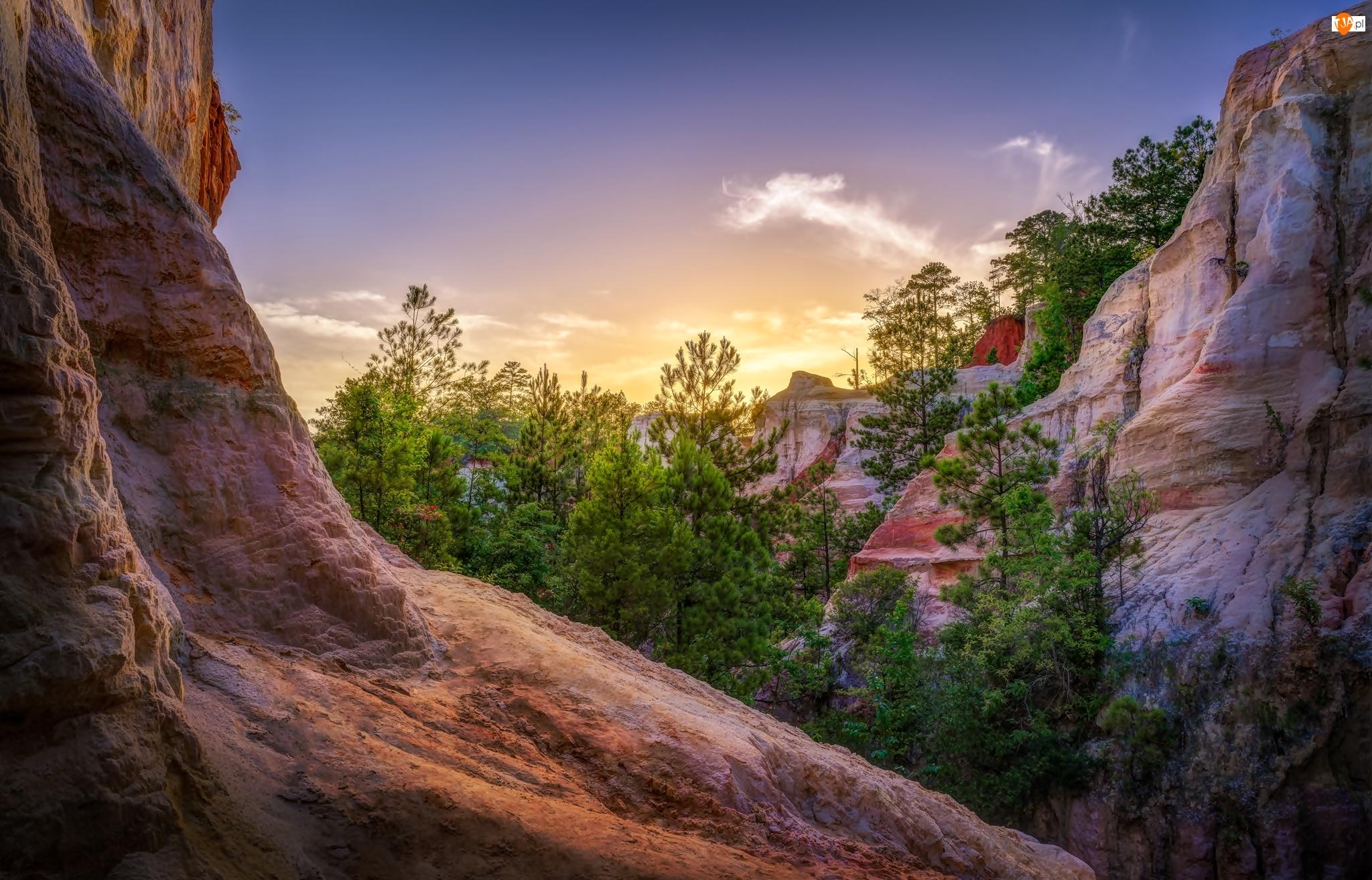 Park stanowy Providence Canyon, Skały, Stany Zjednoczone, Drzewa, Stan Georgia, Góry