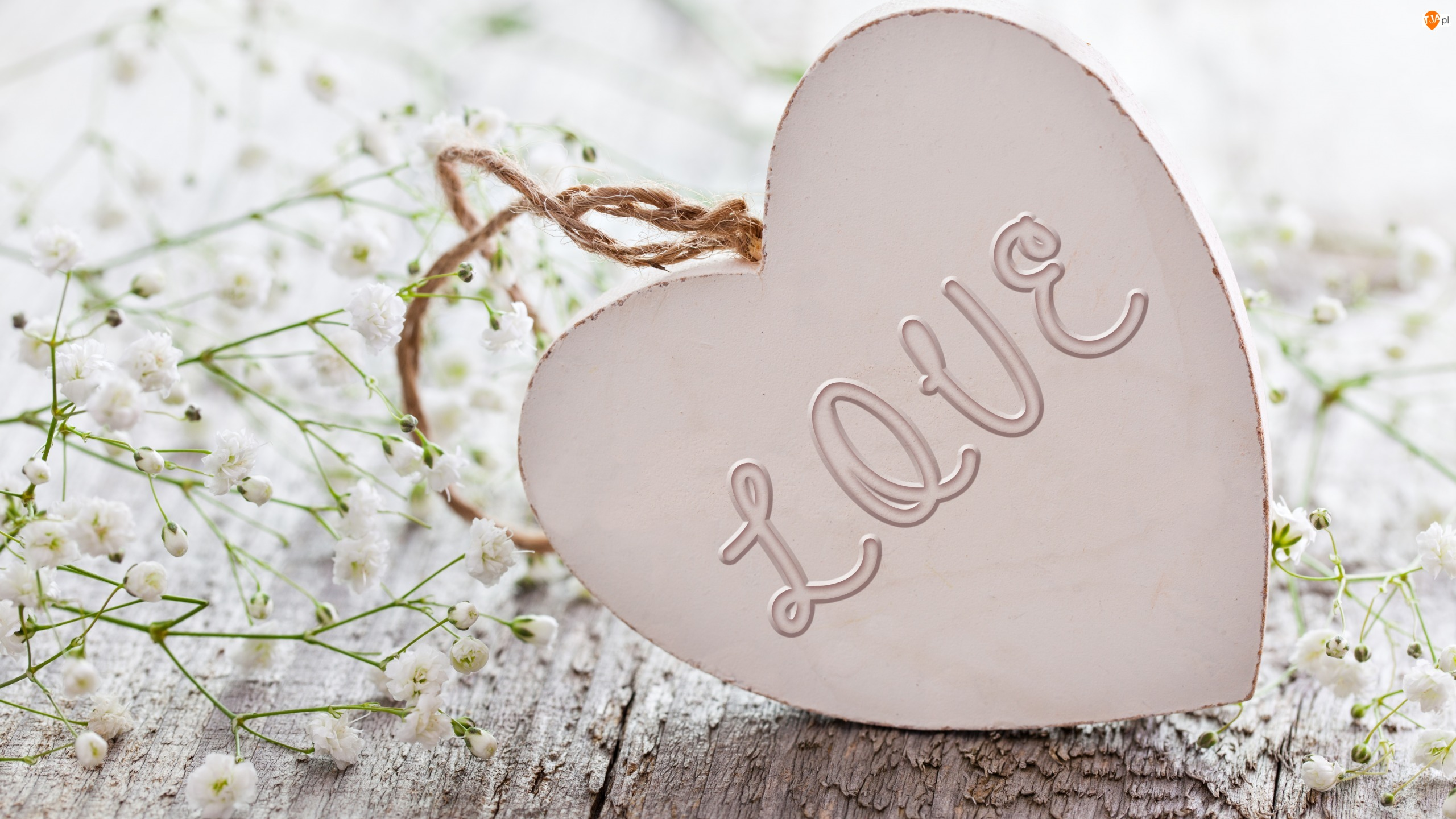 Gipsówka, Serce, Love, Napis, Kwiaty