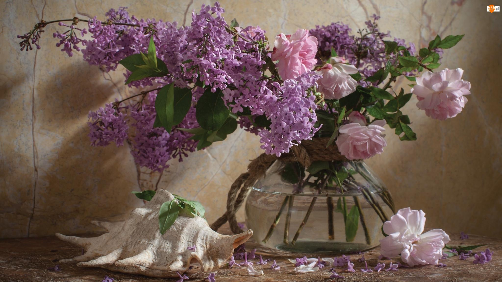 Kwiaty, Róże, Dekoracja, Muszla, Wazon, Bez