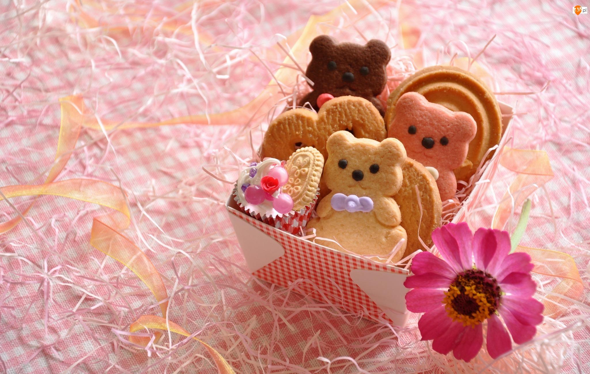 Kwiat, Ciasteczka, Pudełko, Misie, Różowy