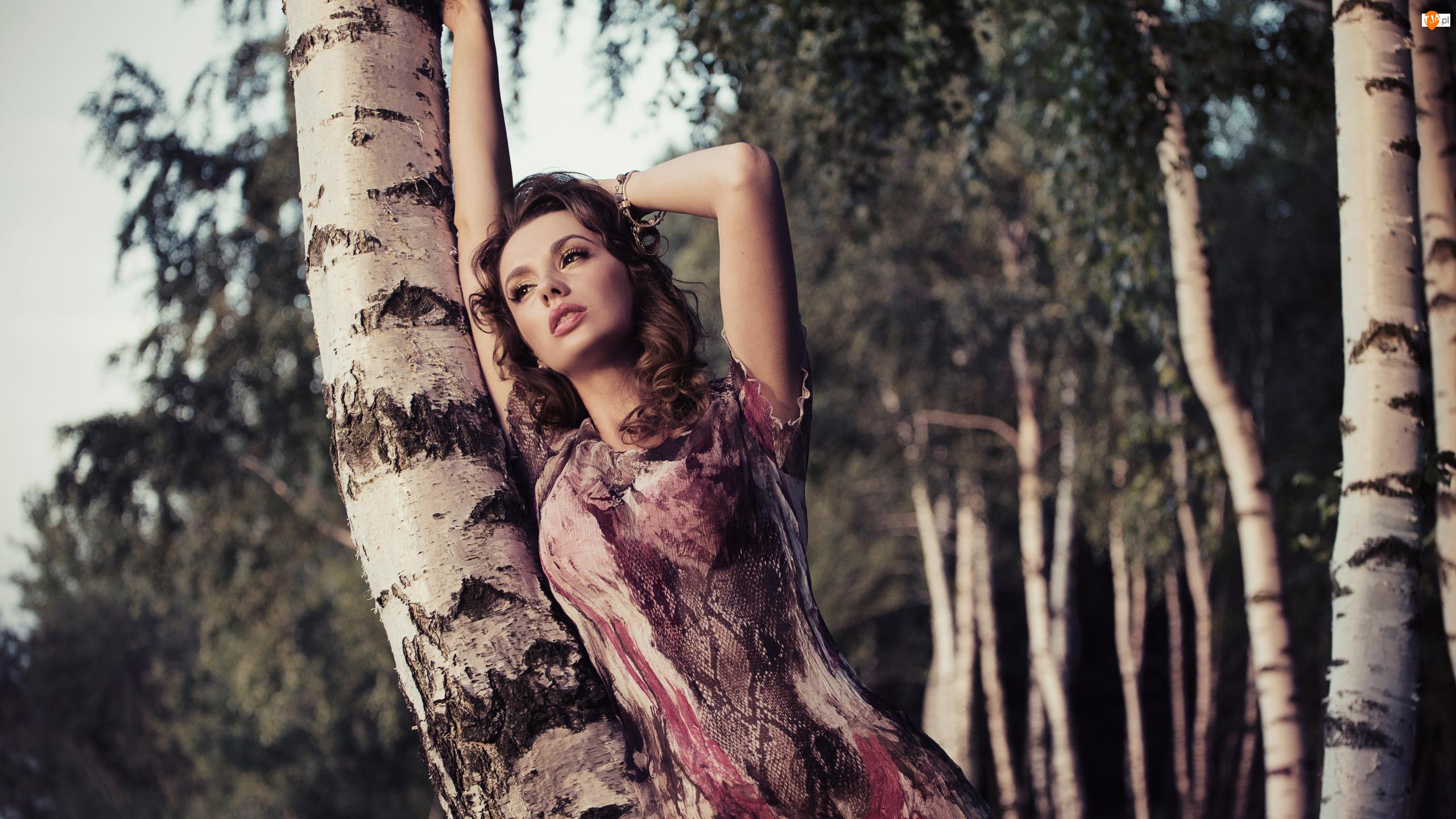 Kobieta, Brzozy, Szatynka, Drzewa