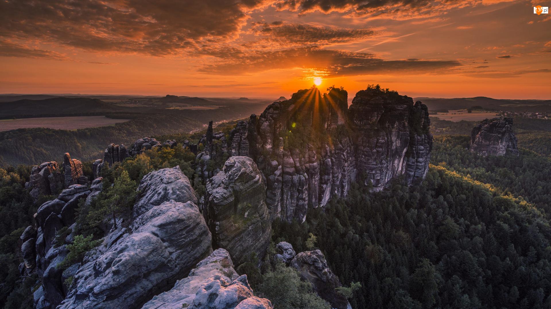 Promienie słońca, Niemcy, Góry Połabskie, Saska Szwajcaria, Drzewa