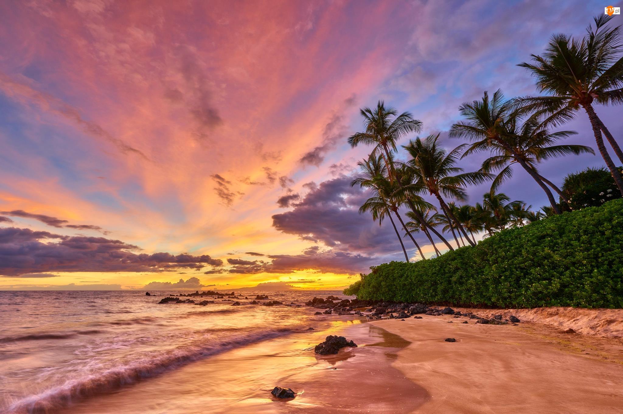 Zachód słońca, Morze, Wyspa Maui, Hawaje, Chmury, Wybrzeże, Palmy