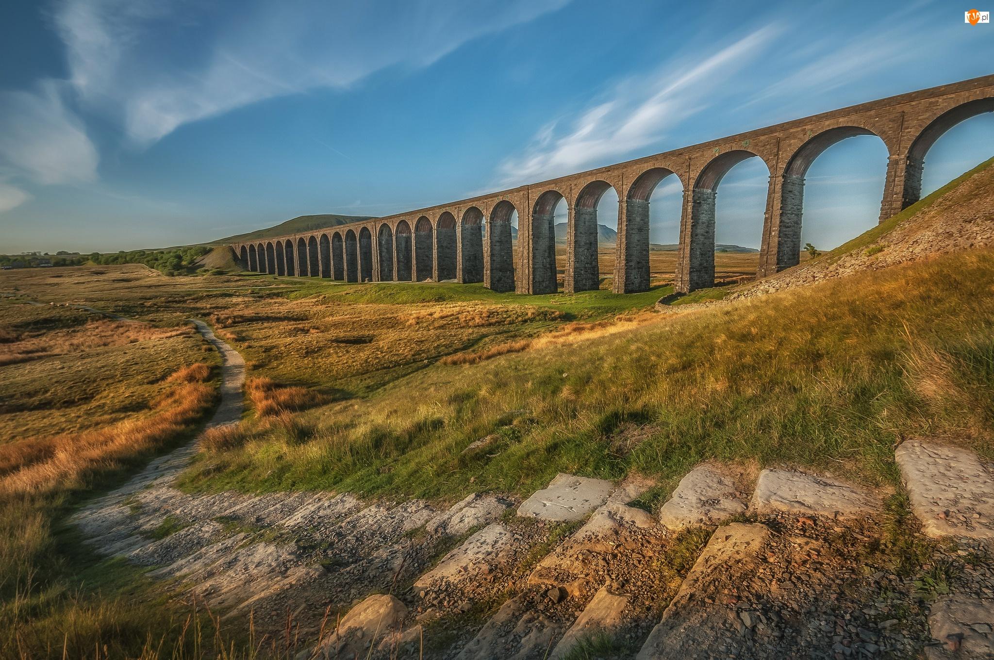 Dróżka, Most, Yorkshire, Anglia, Trawa, Wiadukt kolejowy Ribblehead, Kamienie