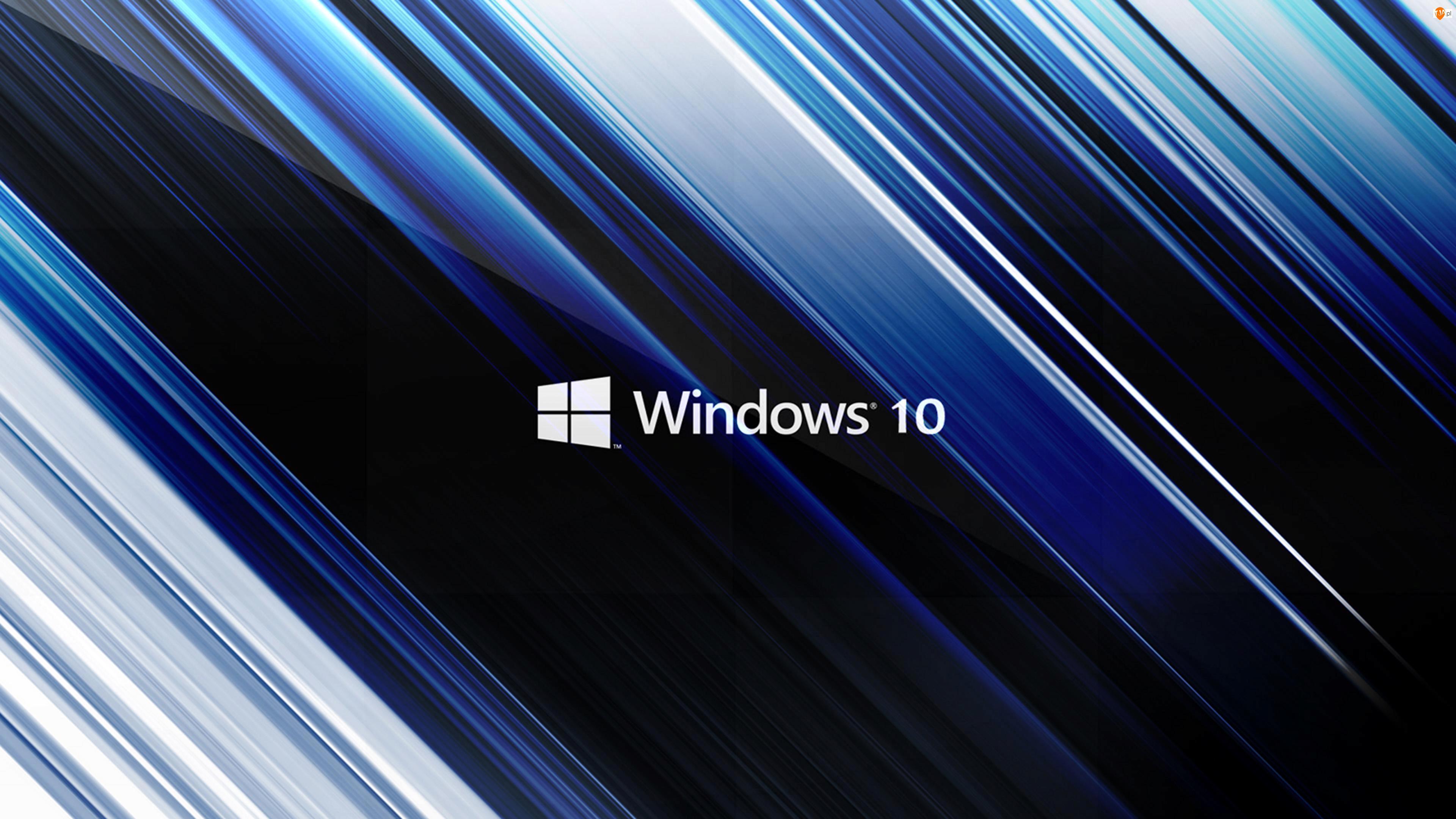 Windows 10, Pasy