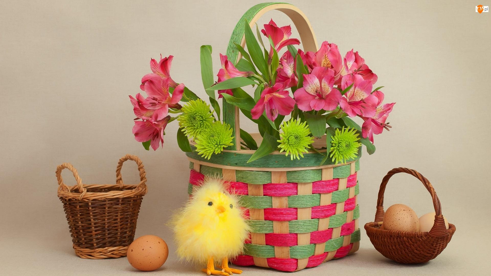 Alstremeria , Koszyczki, Wielkanoc, Kompozycja, Kurczaczek, Jajka, Kwiaty
