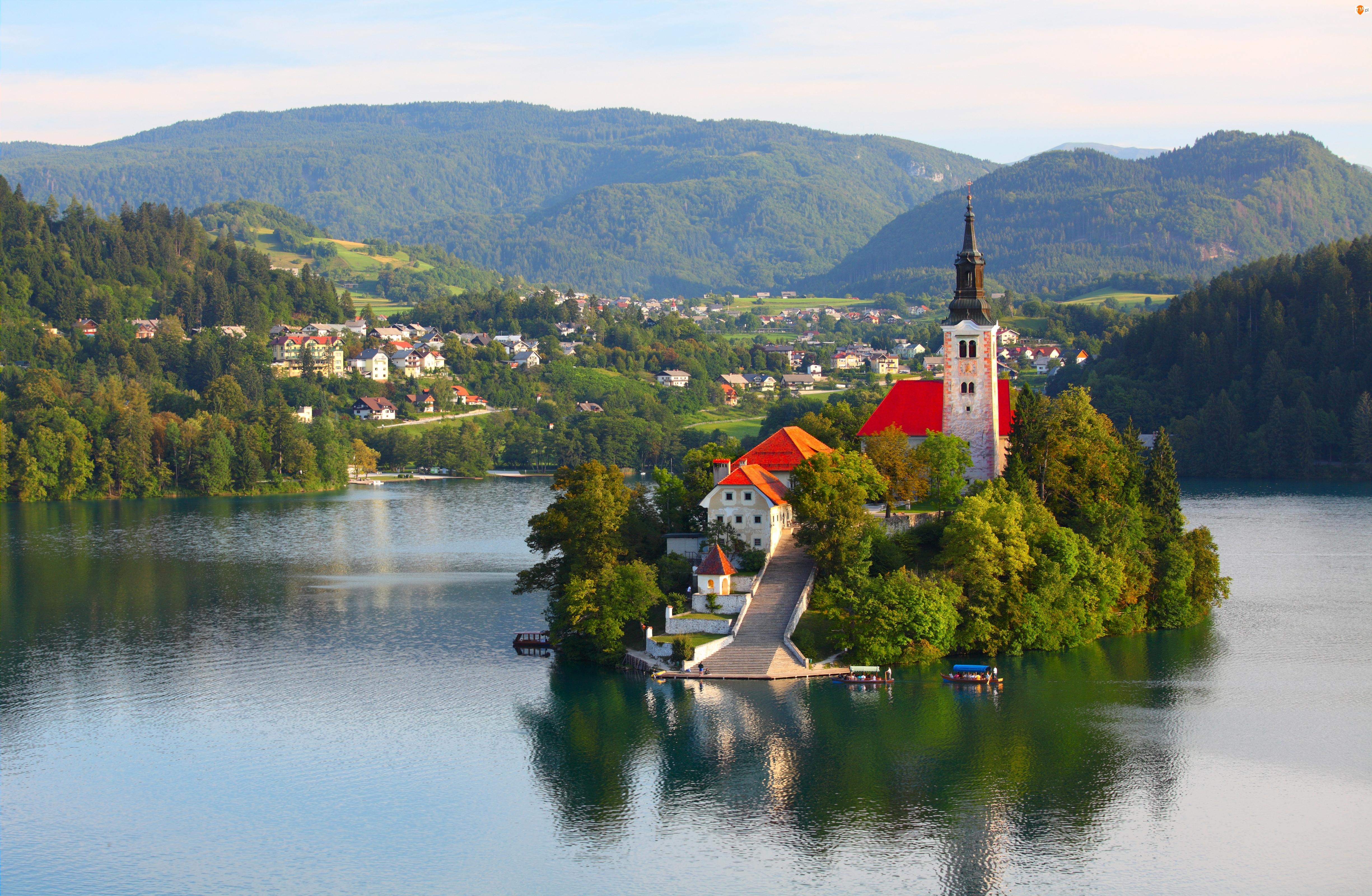 Kościół, Słowenia, Drzewa, Jezioro Bled, Wyspa Blejski Otok