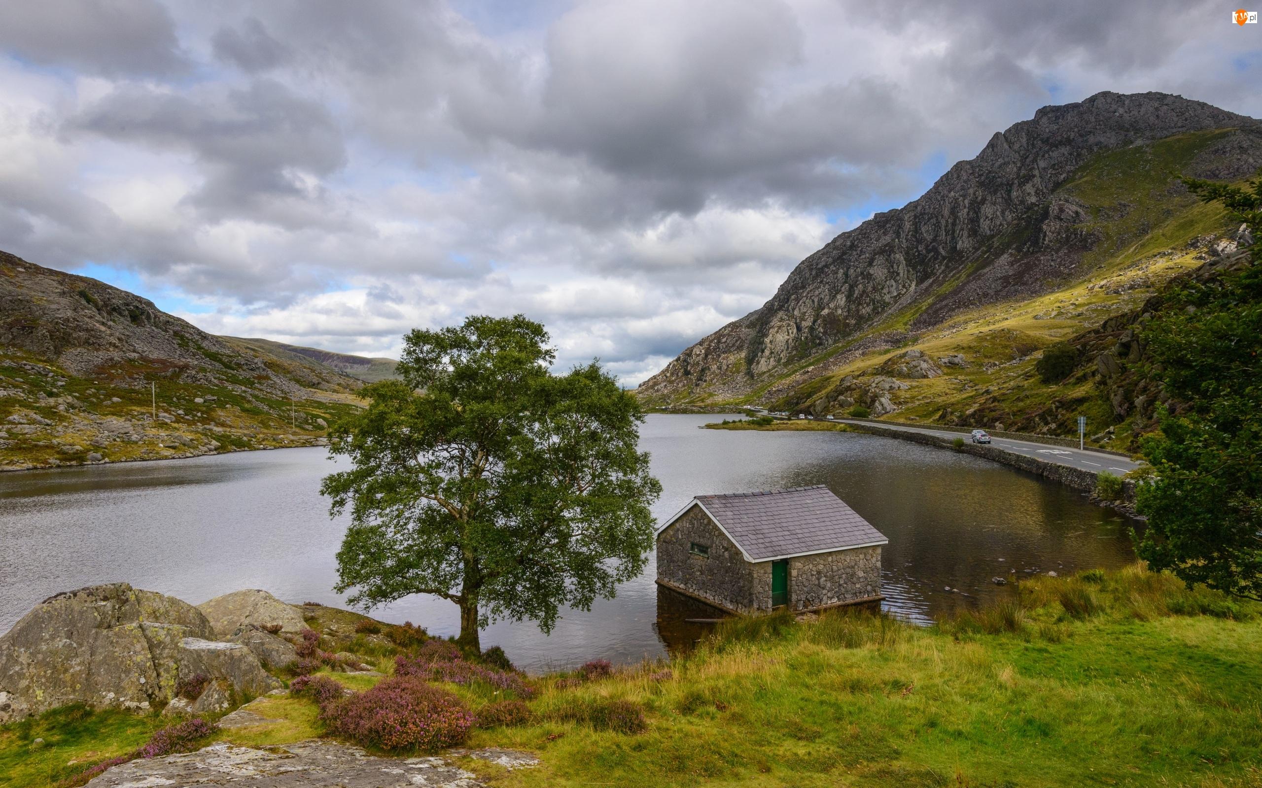 Drzewa, Góry, Walia, Wielka Brytania, Droga, Park Narodowy Snowdonia, Jezioro Llyn Ogwen