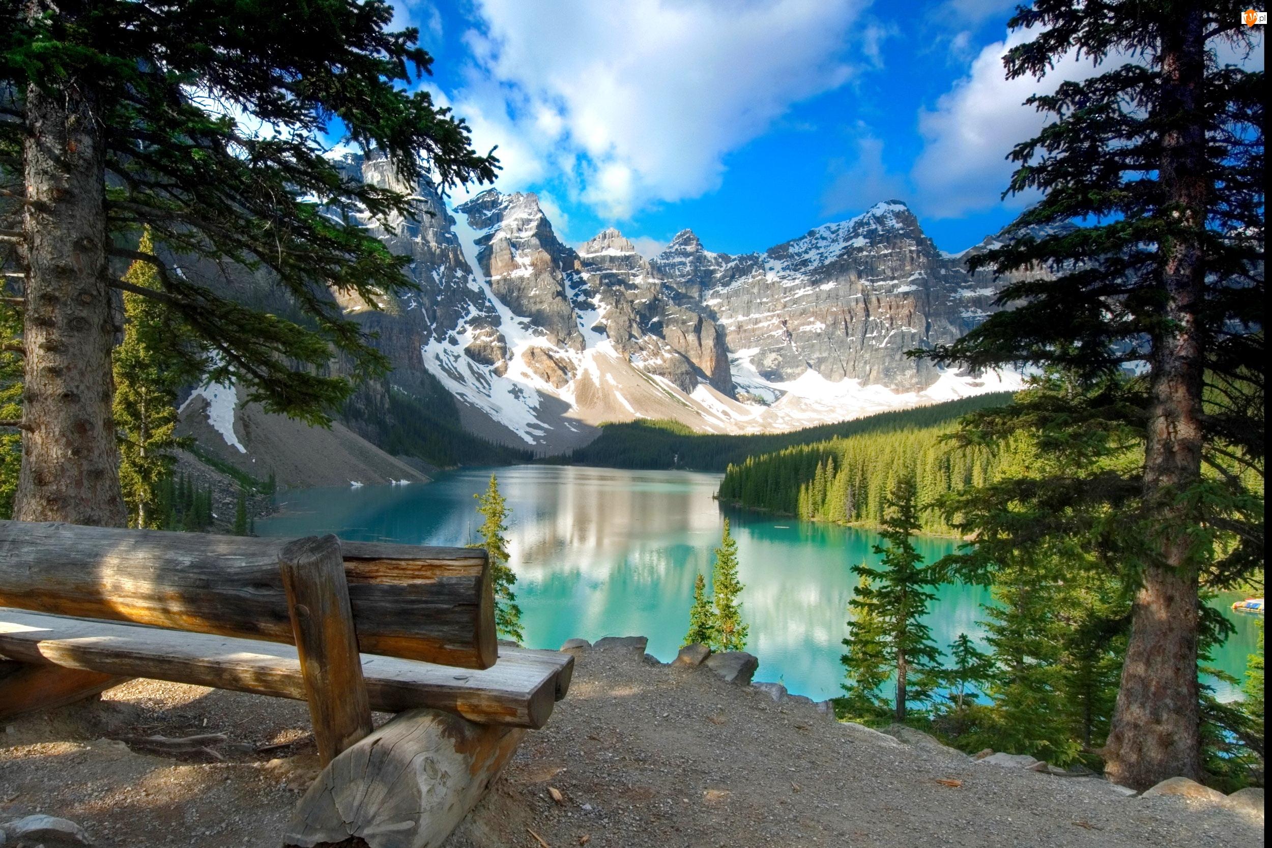 Góry, Ławka, Kanada, Drzewa, Park Narodowy Banff, Jezioro Moraine