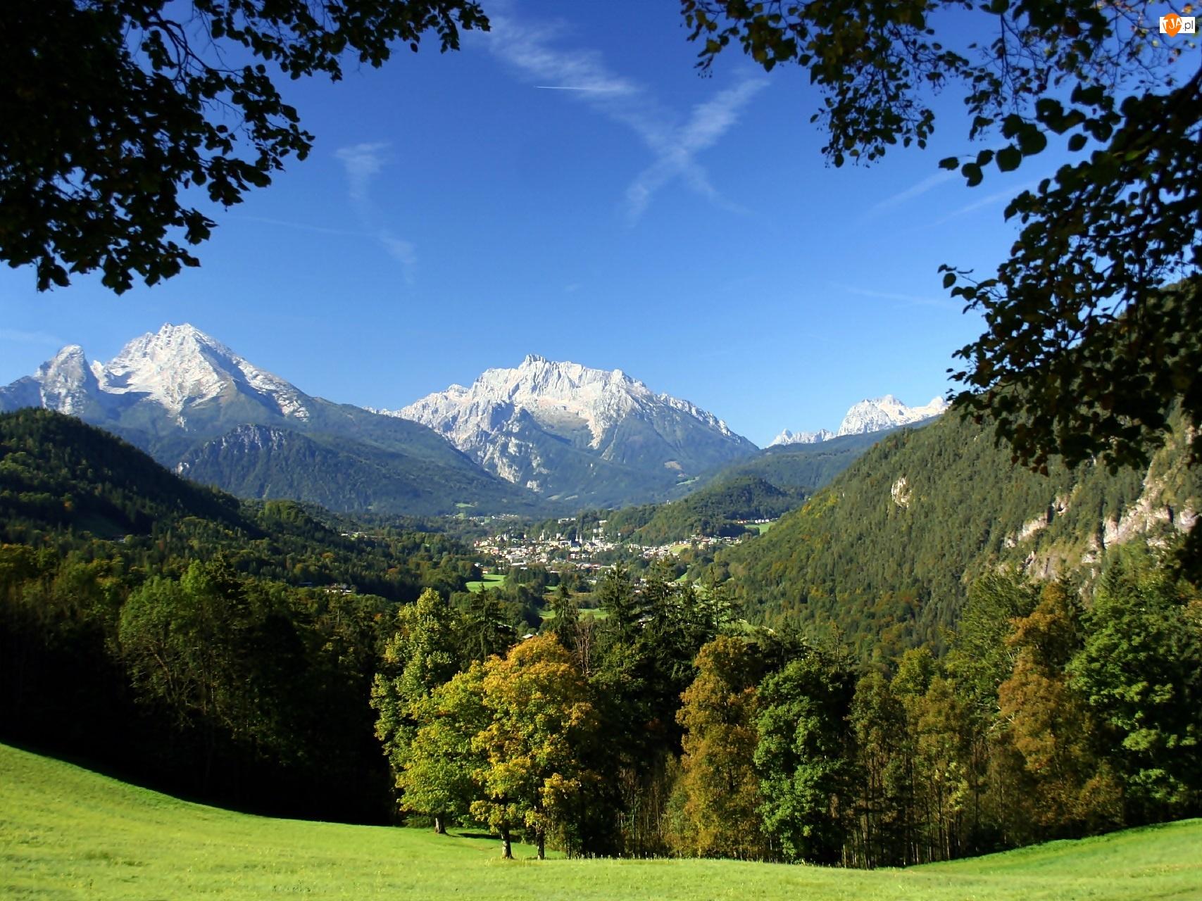 Łąka, Niemcy, Góry Watzmann, Park Narodowy Berchtesgaden, Las