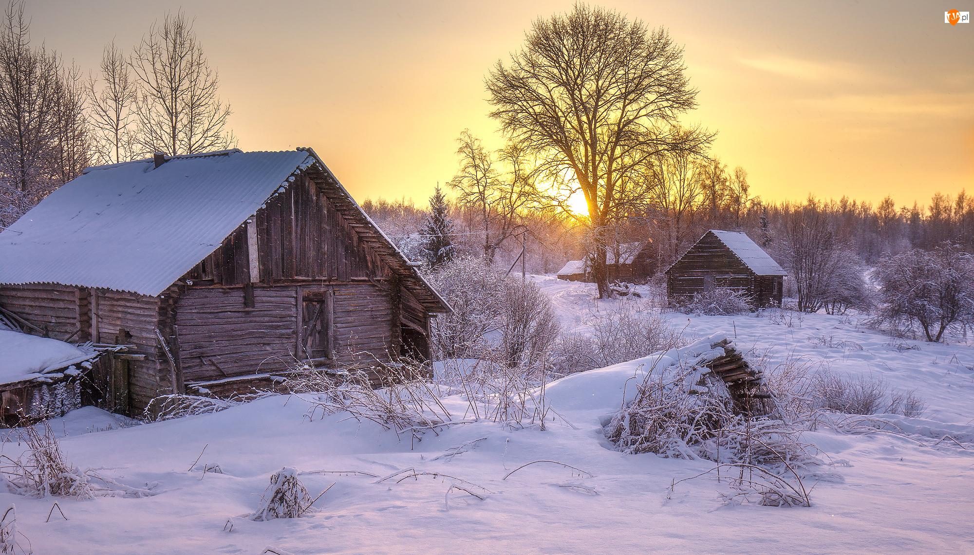 Wschód słońca, Zima, Domy, Śnieg, Drzewa