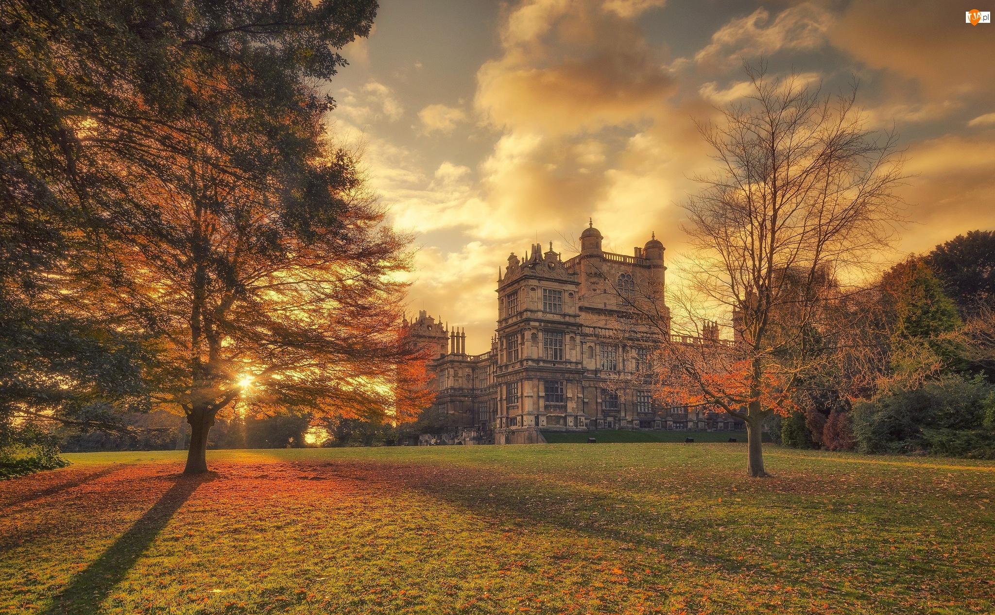 Nottingham Natural History Museum, Jesień, Nottingham, Park, Anglia, Drzewa, Muzeum Wollaton Hall, Chmury