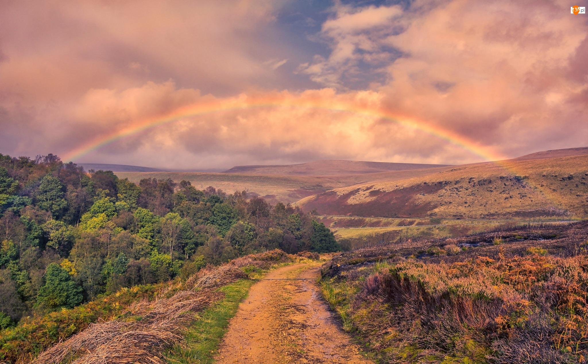 Las, Wzgórza, Drzewa, Hrabstwo Derbyshire, Dolina Longdendale, Anglia, Droga, Park Narodowy Peak District, Tęcza