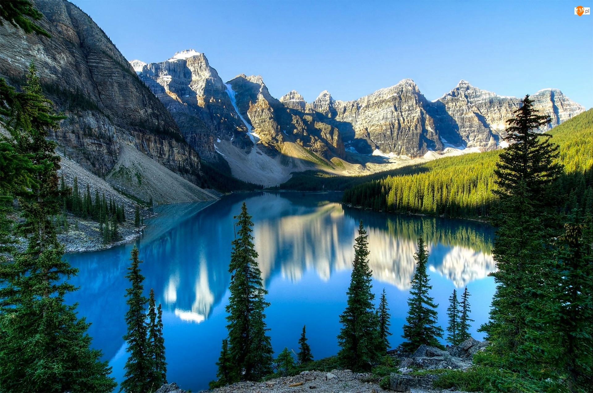 Świerki, Lasy, Park Narodowy Banff, Kanada, Odbicie, Góry, Jezioro Moraine