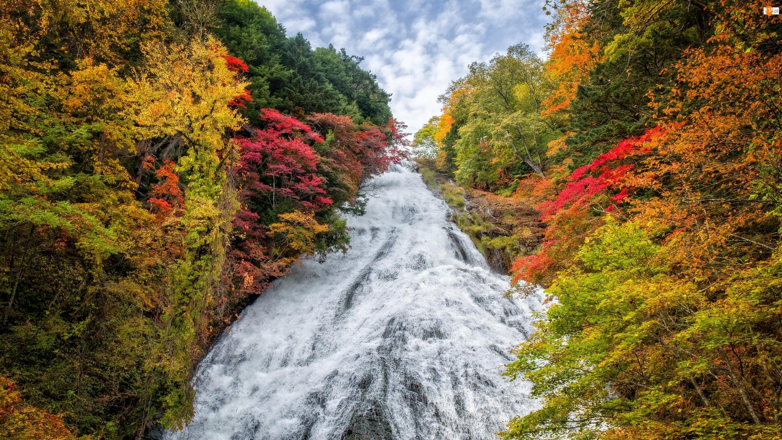 Park Narodowy Nikko, Jesień, Japonia, Drzewa, Prefektura Tochigi, Wodospad Yudaki