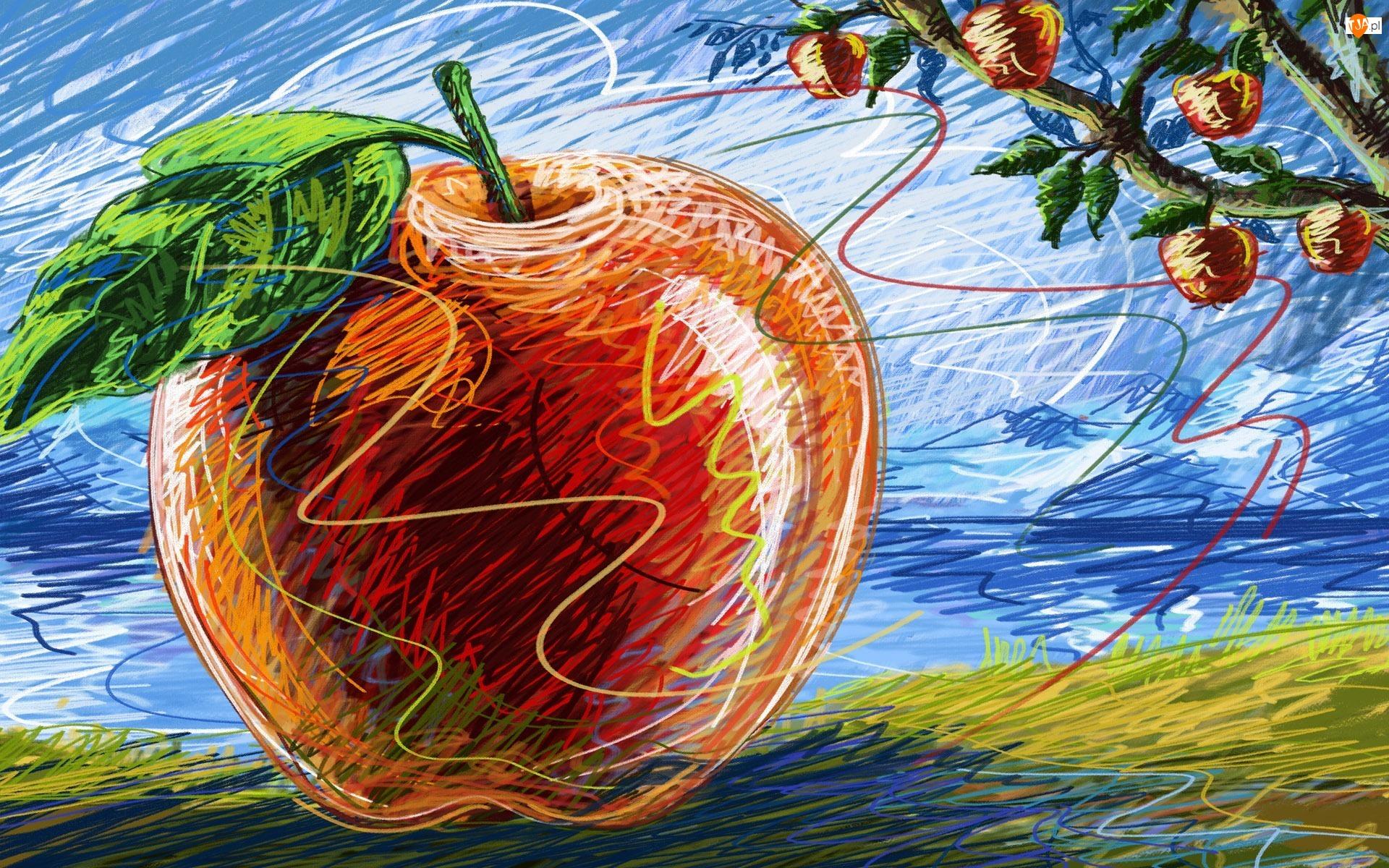 Rysunek, Jabłka, Jabłko, Gałęzie