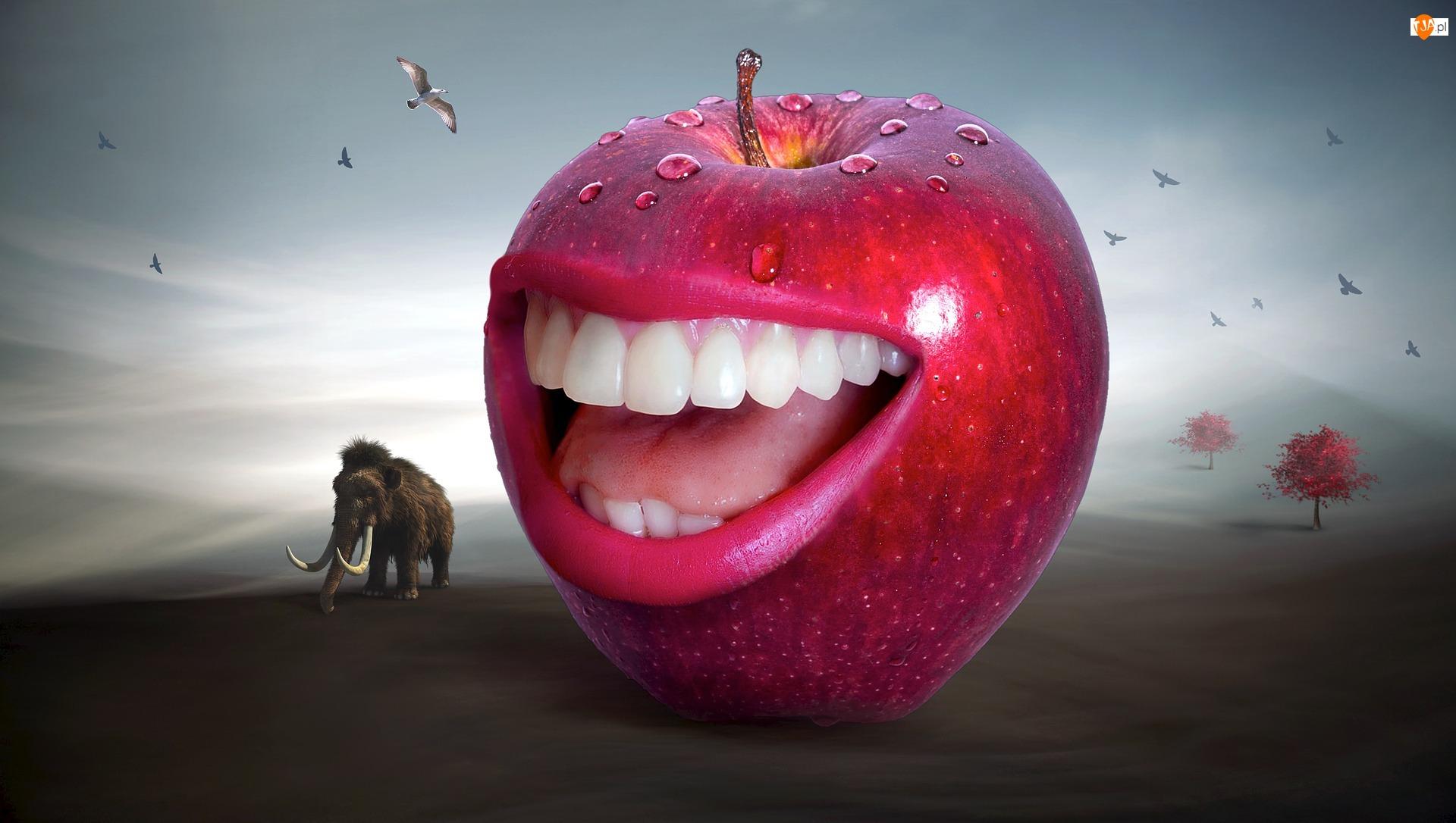 Mamut, Uśmiech, Grafika 2D, Czerwone, Zęby, Jabłko, Ptaki, Usta, Drzewo